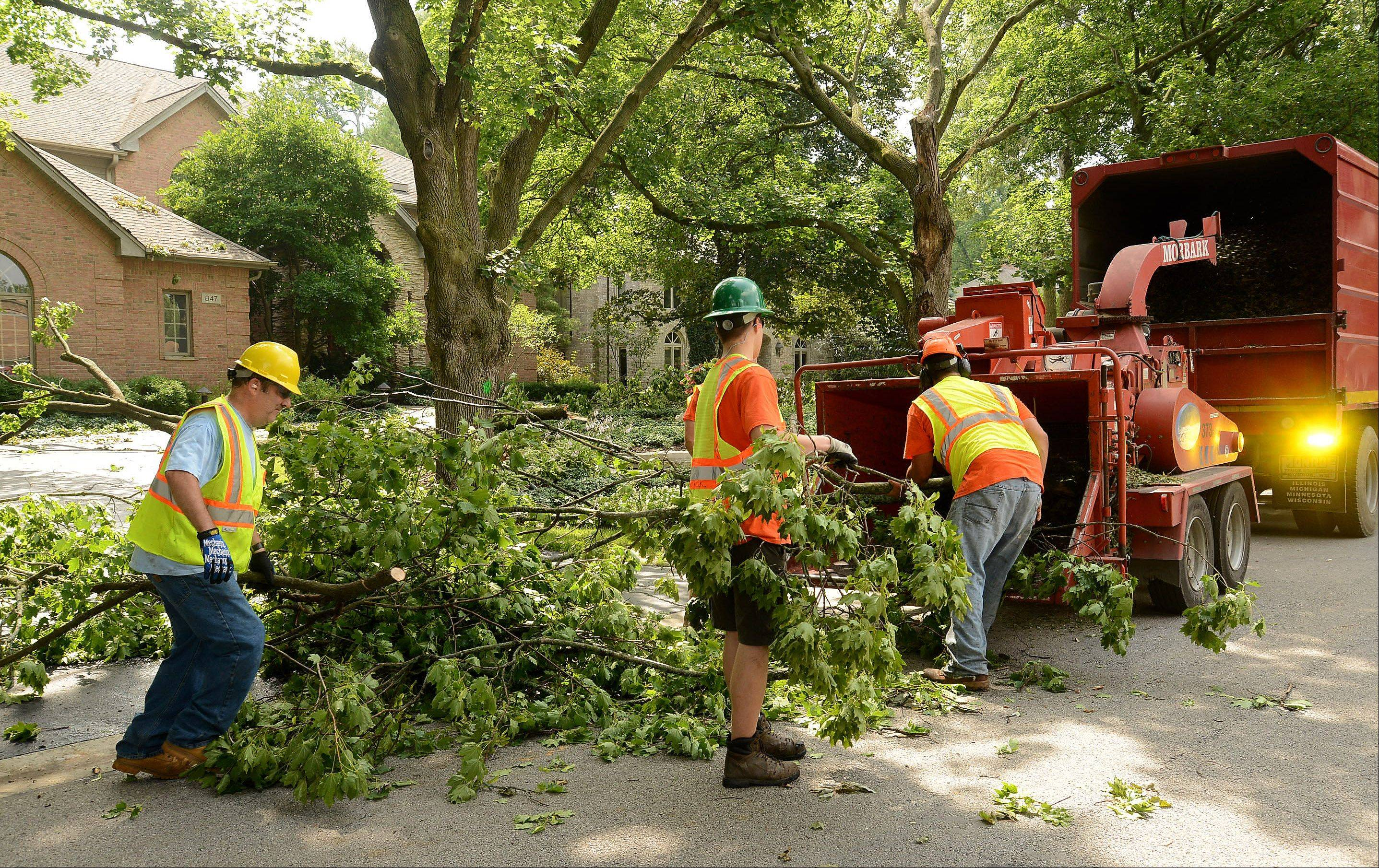 An Arlington Heights public works crew feeds fallen tree limbs from South Beverly Lane into the chipper on Monday.