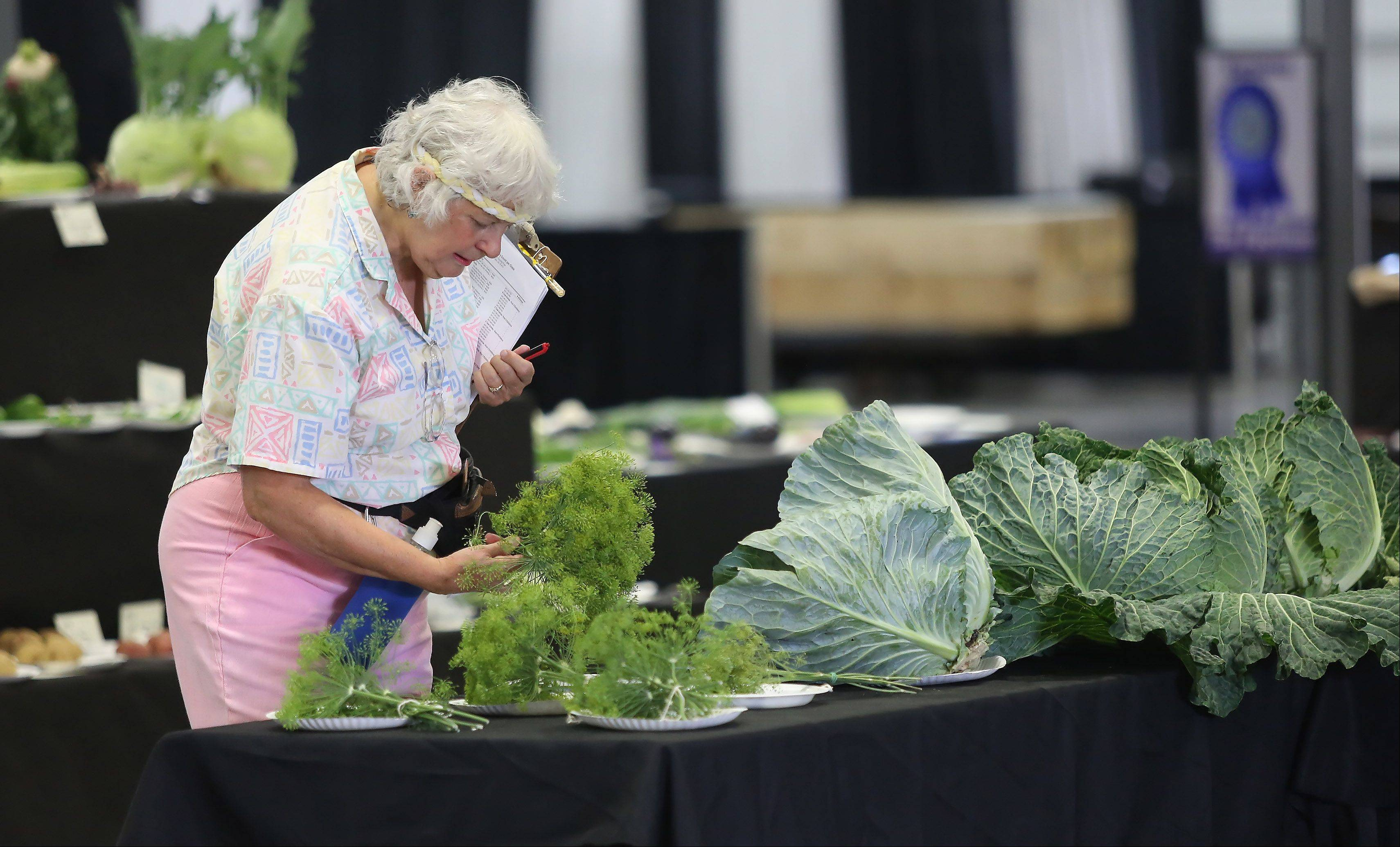 Nancy Neckermann of Antioch inspects vegetables Tuesday at the Lake County Fair in Grayslake.