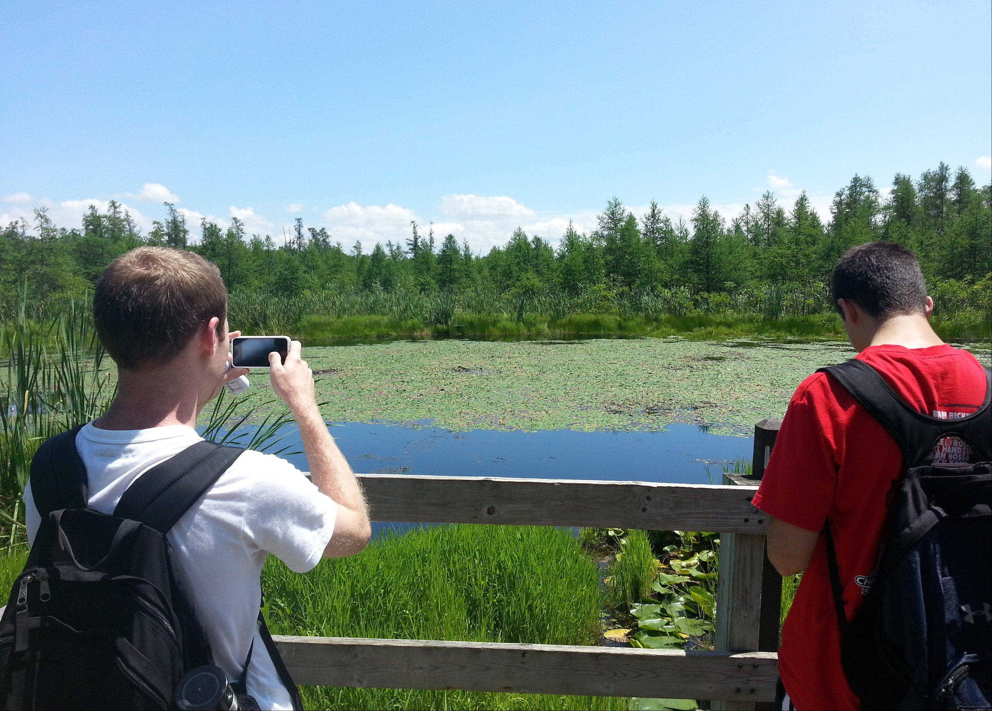 Visitors take photos at the Volo Bog State Natural Area in Ingleside.