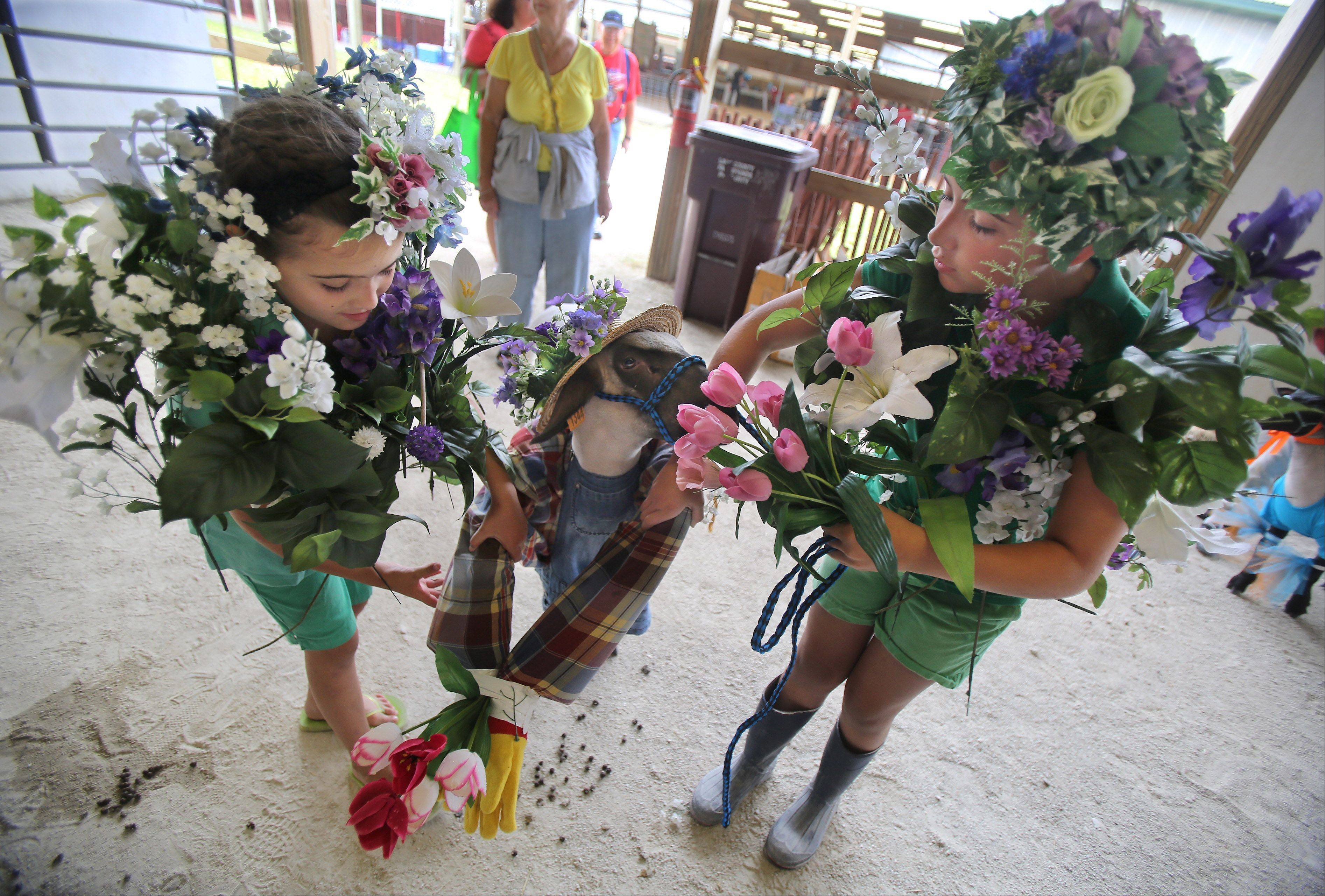 Kendra Dilg, 10, of Pleasant Prairie, Wis., right, tries to keep her lamb from eating her flowers as she waits with her sister, Alaina, 8, to enter the Livestock Costume Contest during the Lake County Fair Thursday at the Lake County Fairgrounds in Grayslake.