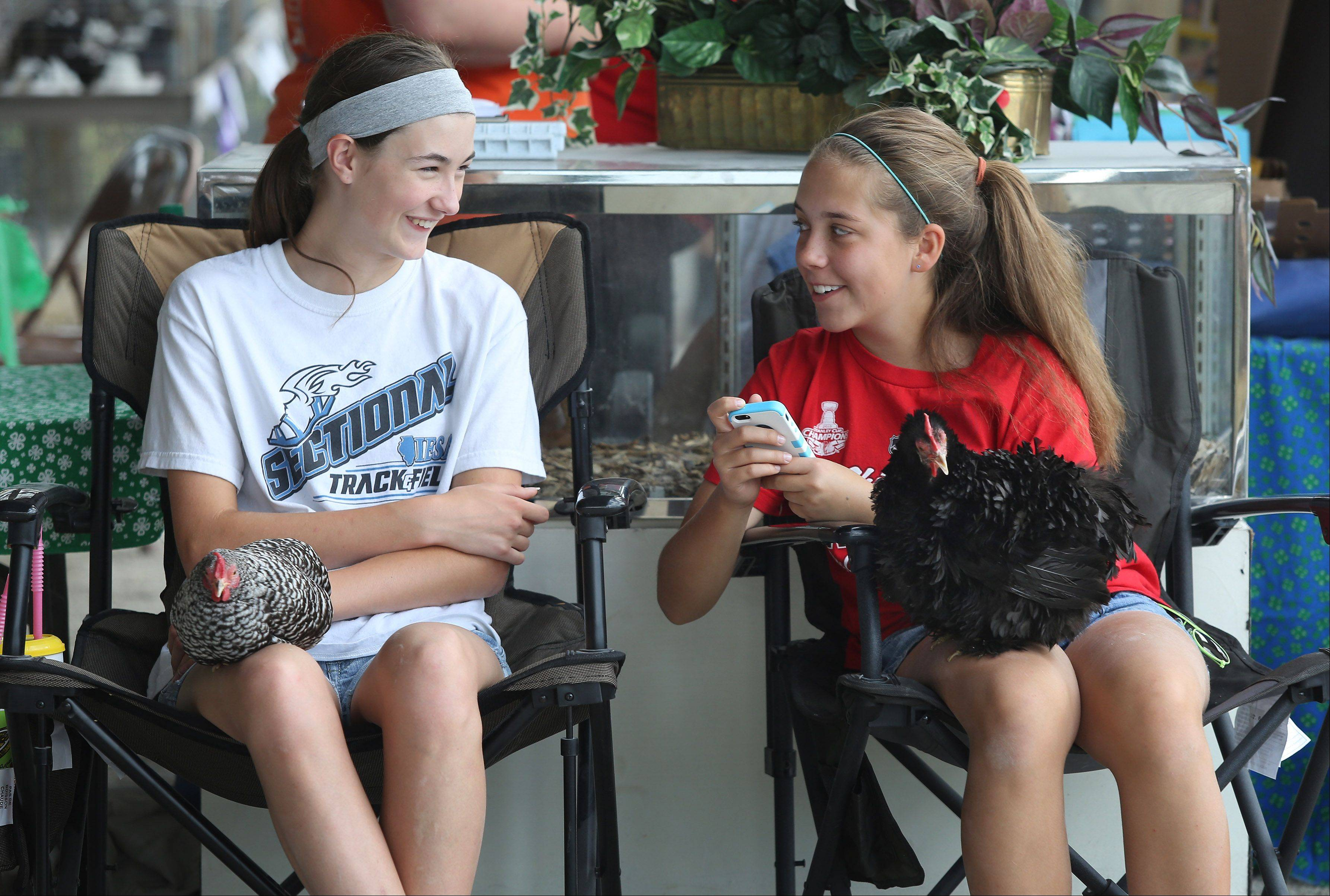 Friends Dana Knoblauch, 15, of Lindenhurst , left, and Jenna Anderson, 15, of Lake Villa sit with chickens on their laps during the Lake County Fair Thursday at the Lake County Fairgrounds in Grayslake.