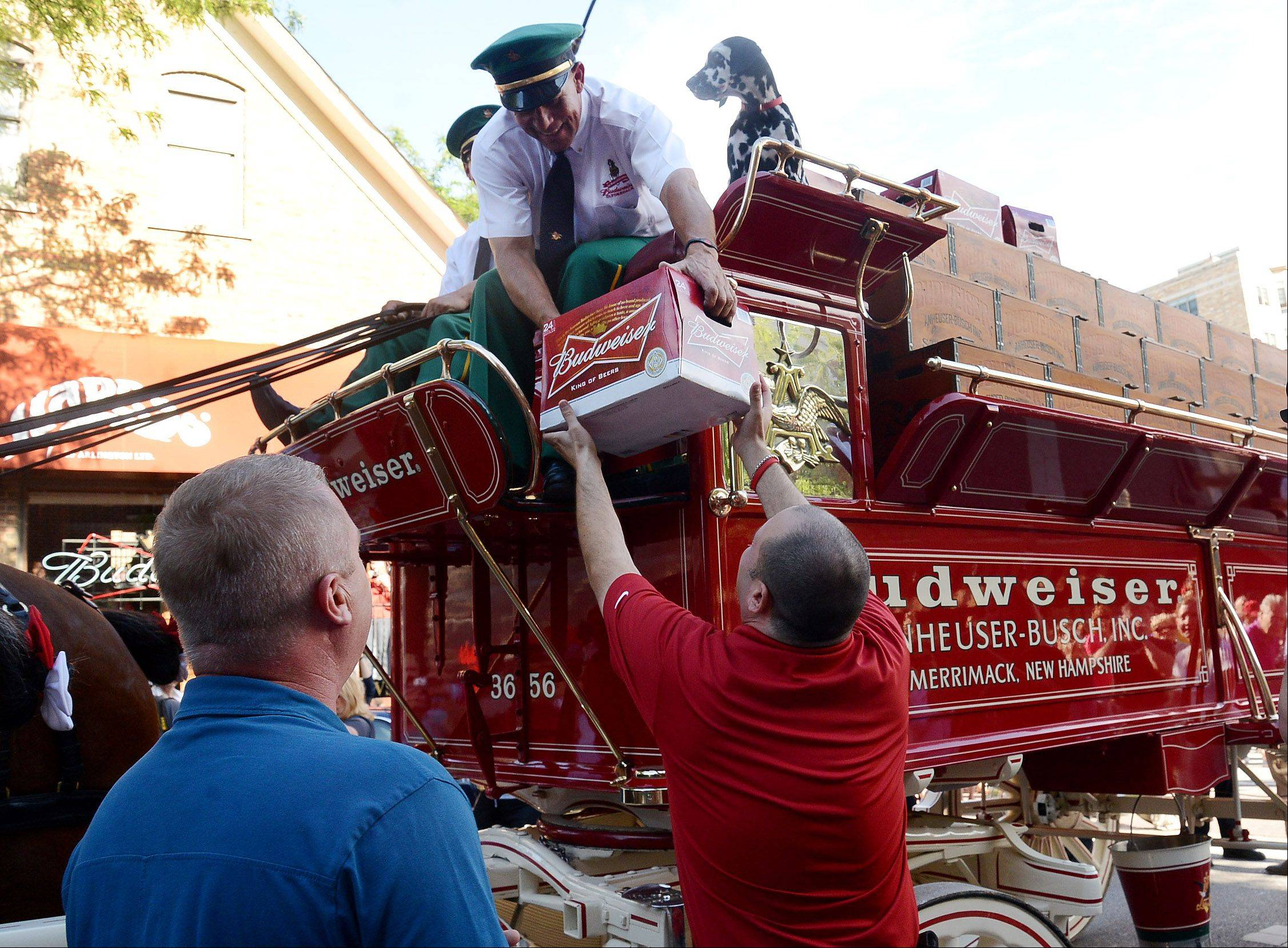 The Budweiser Clydesdales and Jim Dvorak deliver beer to Derek Hanley of Peggy Kinnane's in downtown Arlington Heights on Wednesday.