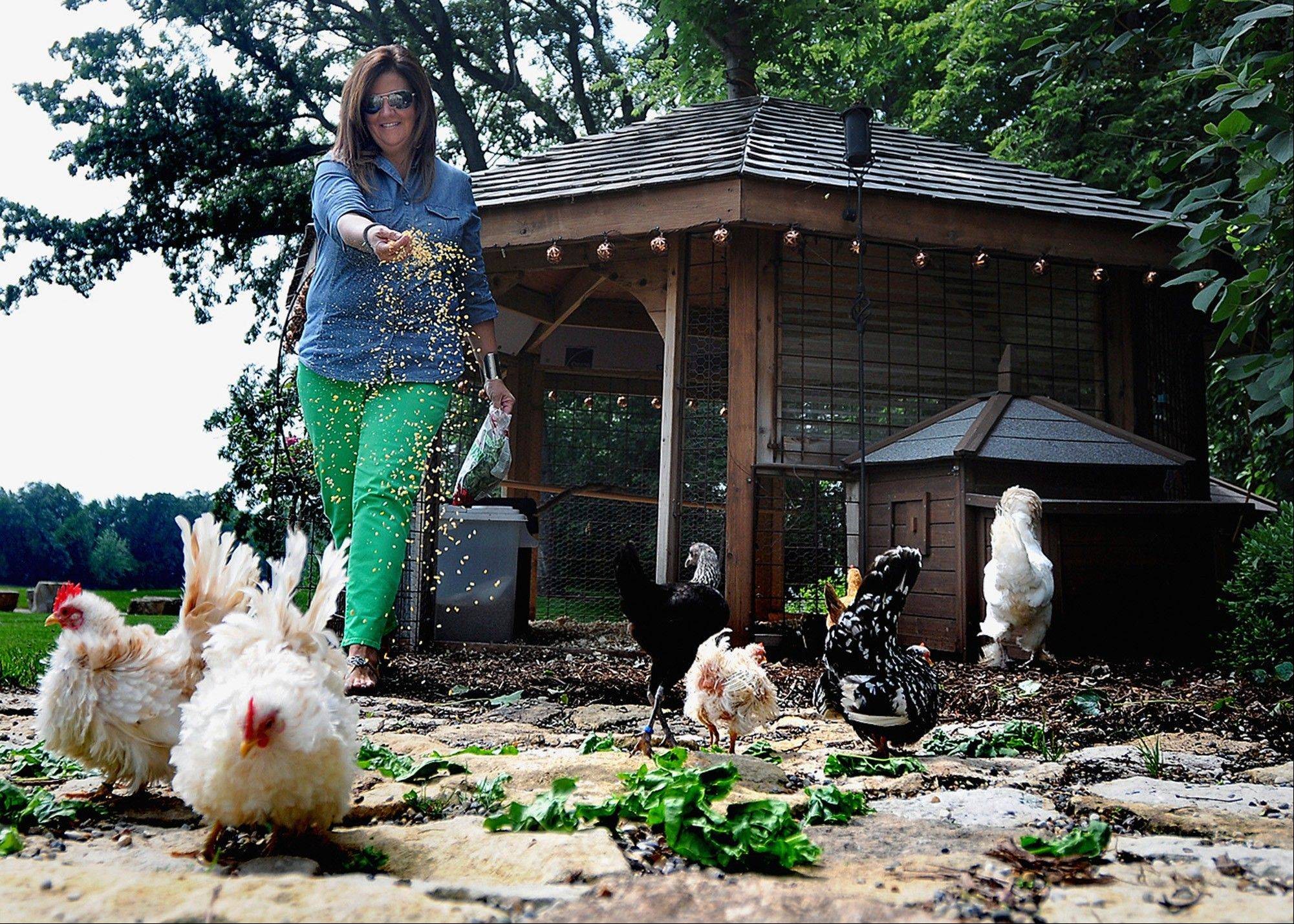 Laurie Gilmore feeds the chickens in front of their coop, in back of the Gilmore's Aroma Park, Ill., home.