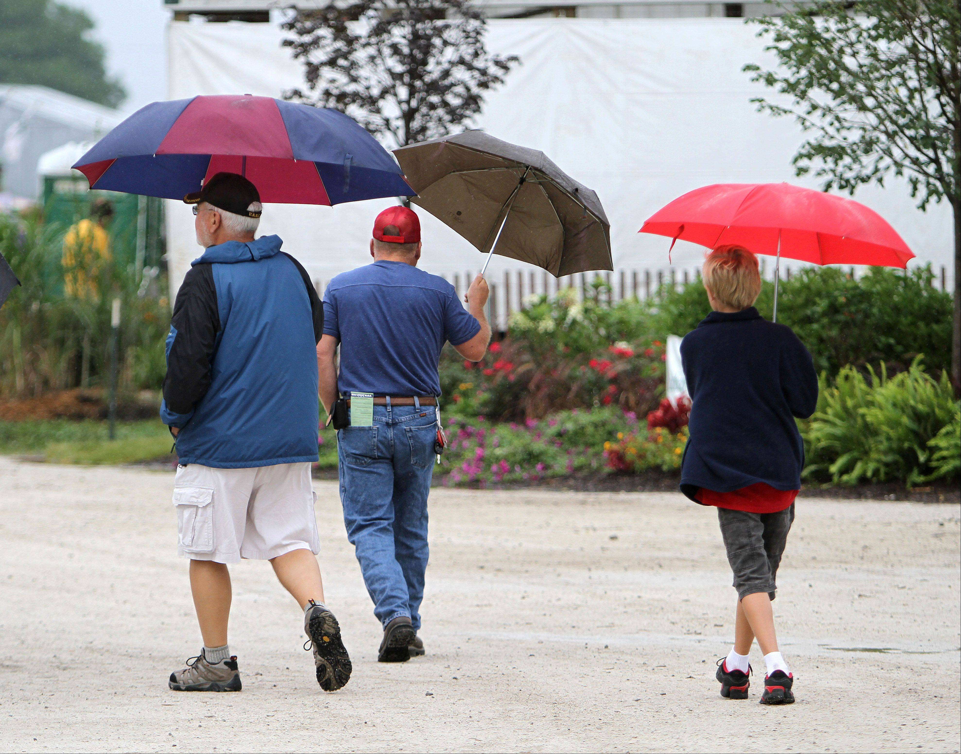 Umbrellas were in abundance at the Lake County Fair in Grayslake on Friday.