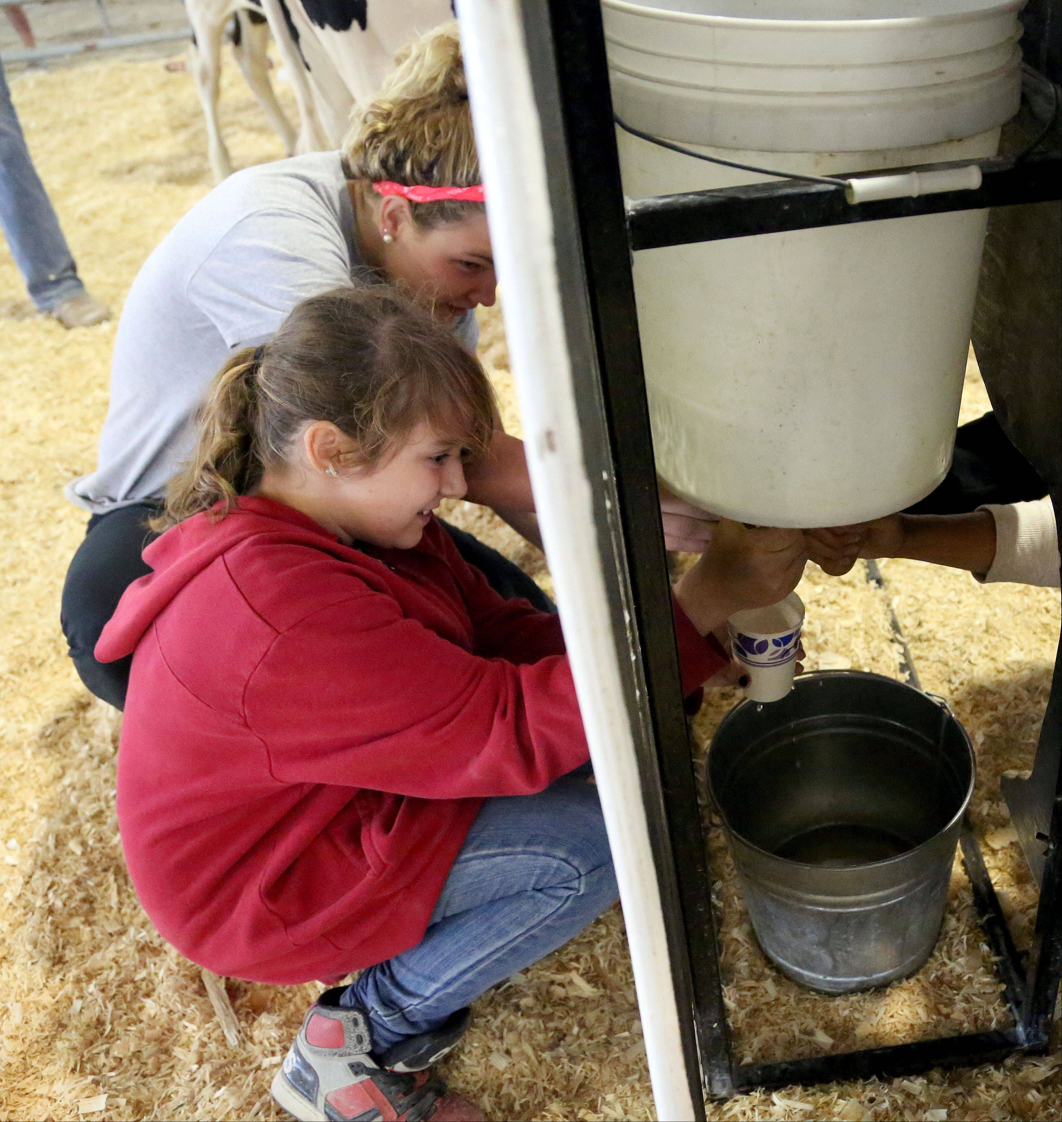 Fourteen-year-old Mata Stilp of Wilmette, back, and eleven-year-old Sarah Lincicome of Beach Park milk a fake cow during the Crazy Cow Relay Races.