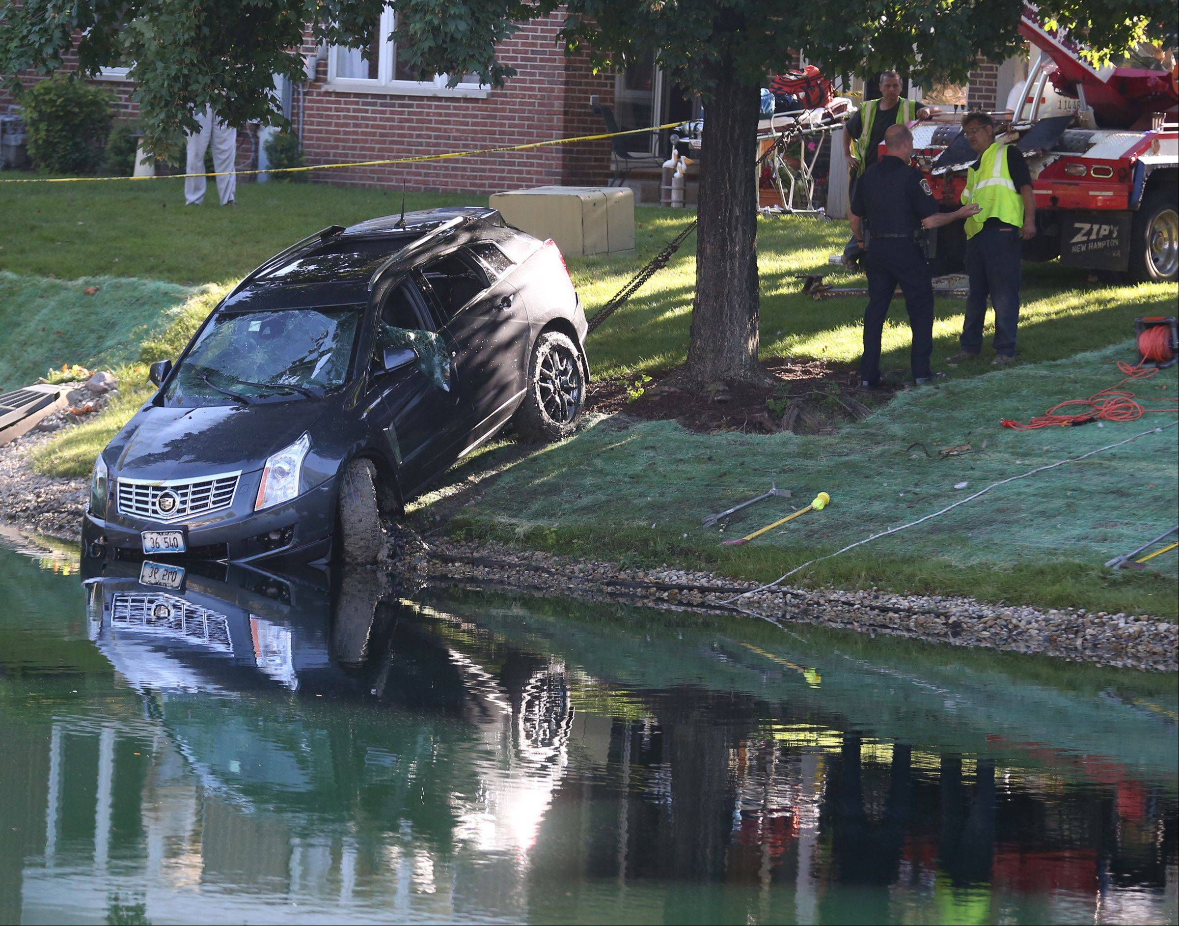 A man was pulled from this car in a pond yesterday in Arlington Heights after neighbors dived in to try to free him from it. They couldn't get a door or window open.
