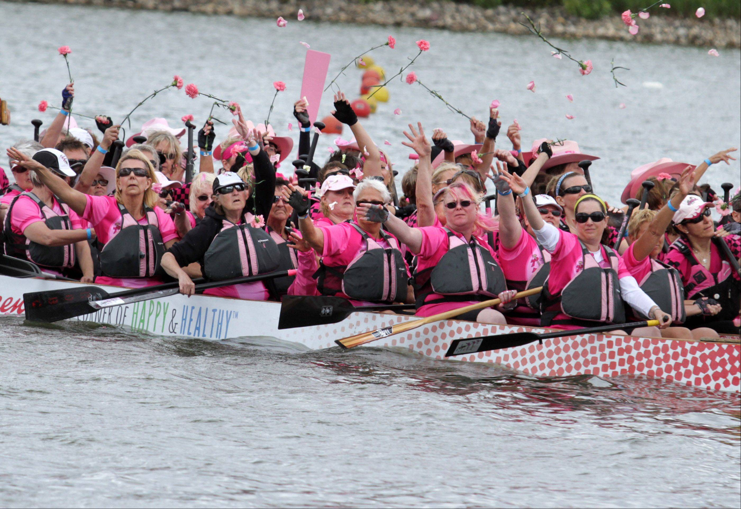 Cancer survivor teams wore pink and held a ceremony throwing roses into Lake Arlington during the Walgreens Chicago International Dragon Boat Festival in Arlington Heights on Saturday.