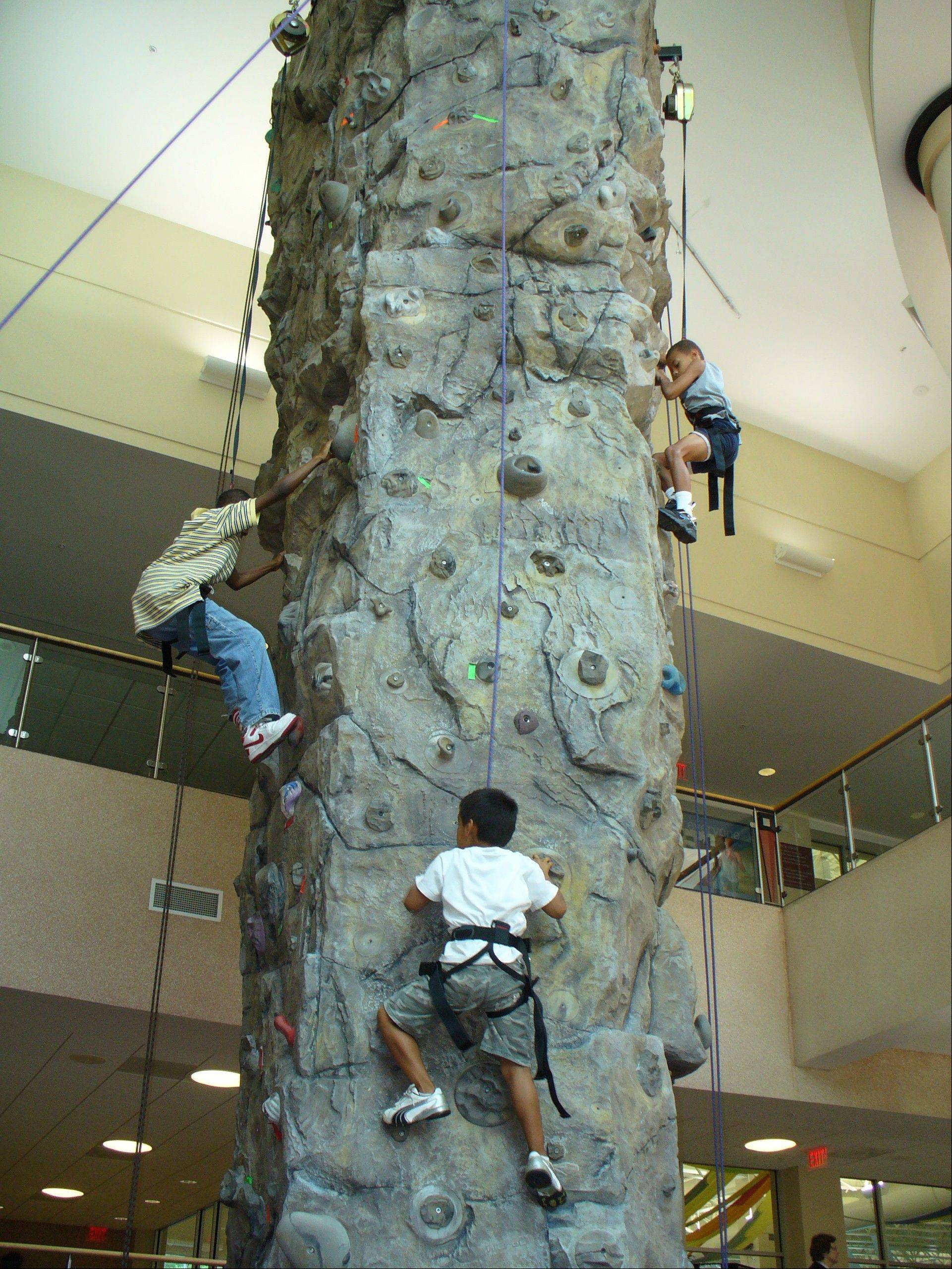 The Centre of Elgin's climbing wall offers 1,165 square feet of routes for all skill levels.