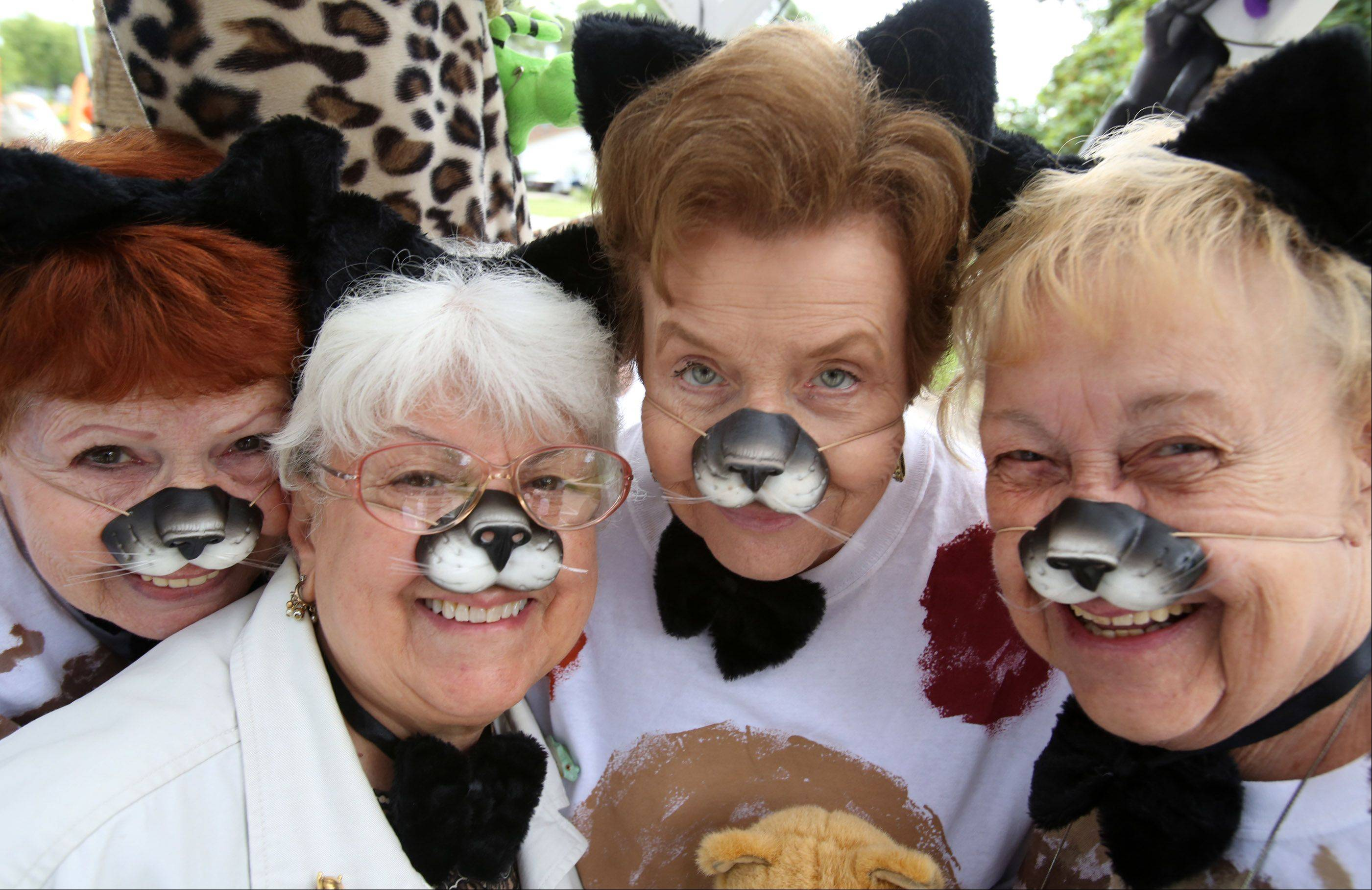 Lee Sedlack, left to right, June Euliano, Kathleen Donaldson, and Charlane Ahlin, on the Hanover Township Senior Services float celebrating Cats and the best of Broadway before the start of the Streamwood Summer Celebration parade on Saturday.