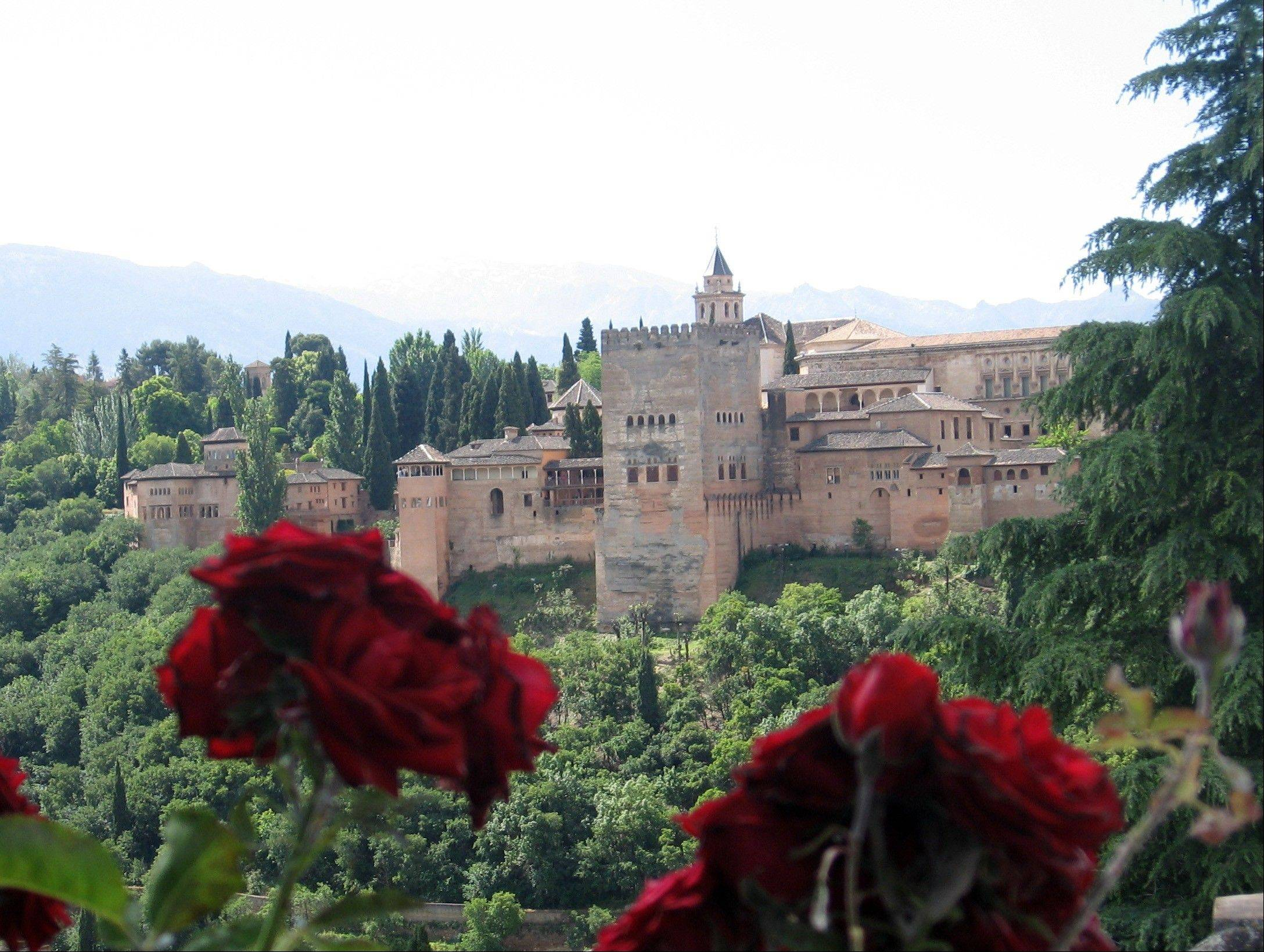 Roses in the garden of a mosque in the Albaicin neighborhood in Granada, in Andalusia, Spain, framing the Alhambra, the city's medieval Islamic palace complex. Andalusia offers a fusion of Christian and Islamic cultures, found in architectural masterpieces and in everyday life.