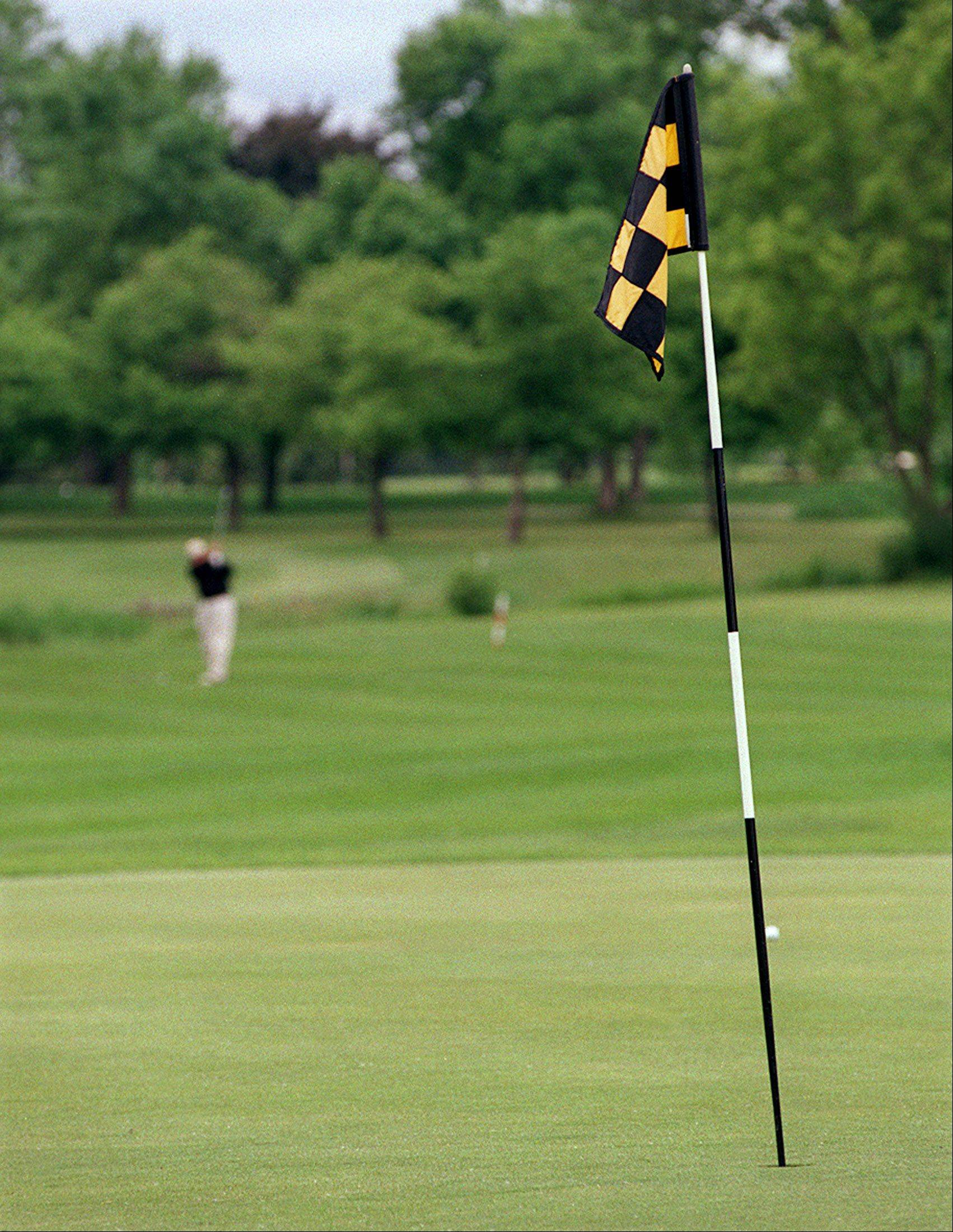 Subsidies for the village's two golf courses is one reason Buffalo Grove officials say they might face deficits over the next five years. However, officials note, the size of the subsidy will decline from $150,000 to $25,000 between 2014 and 2018.