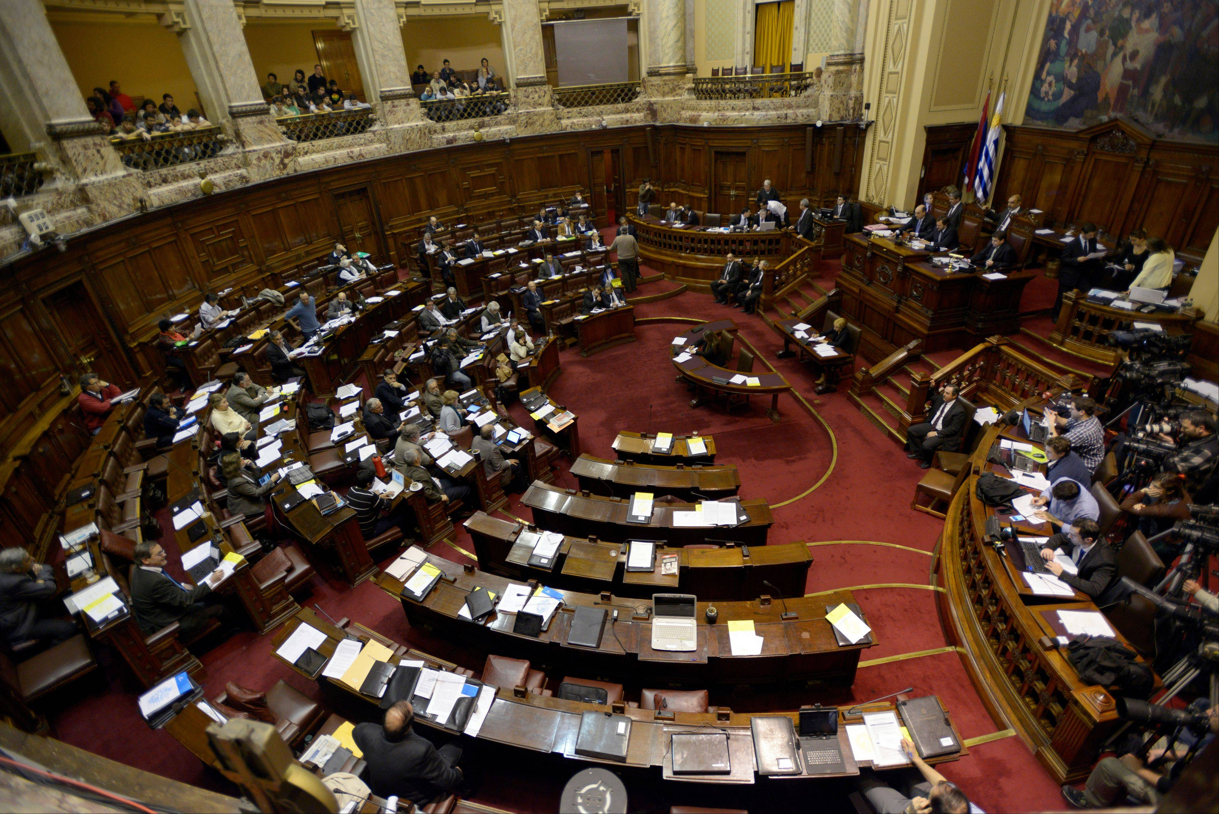 Lawmakers debate a bill that would legalize marijuana and regulate production and distribution in Montevideo, Uruguay, Wednesday, July 31, 2013. Uruguay's unprecedented plan to put the government at the center of a legal marijuana industry has made it halfway through congress.