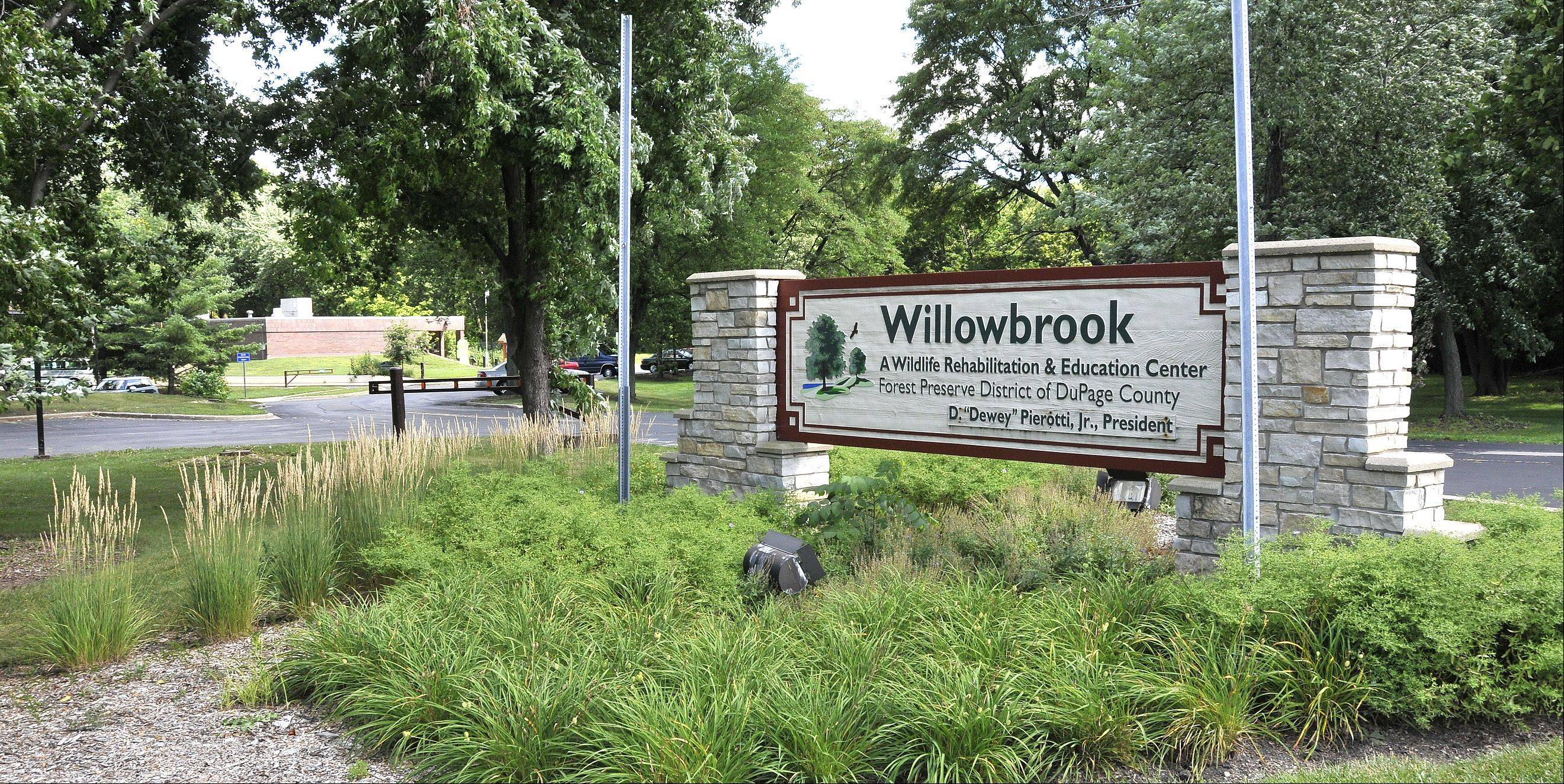 The first phase of Glen Ellyn's Willowbrook Wildlife Center's $20 million renovations will begin by Labor Day.