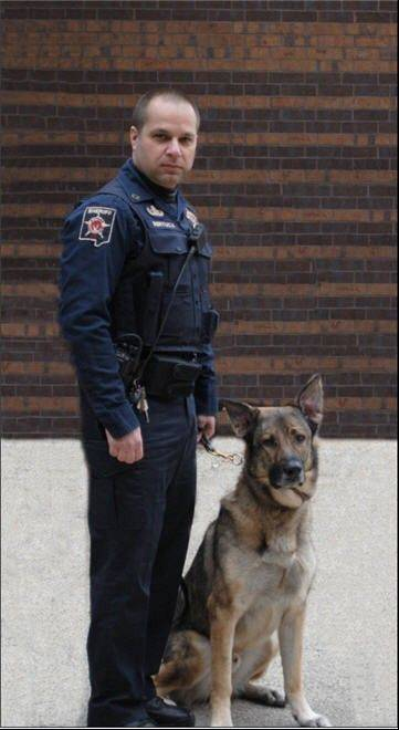 Stitch, 9, a canine officer for the DuPage County sheriff's office, has died.