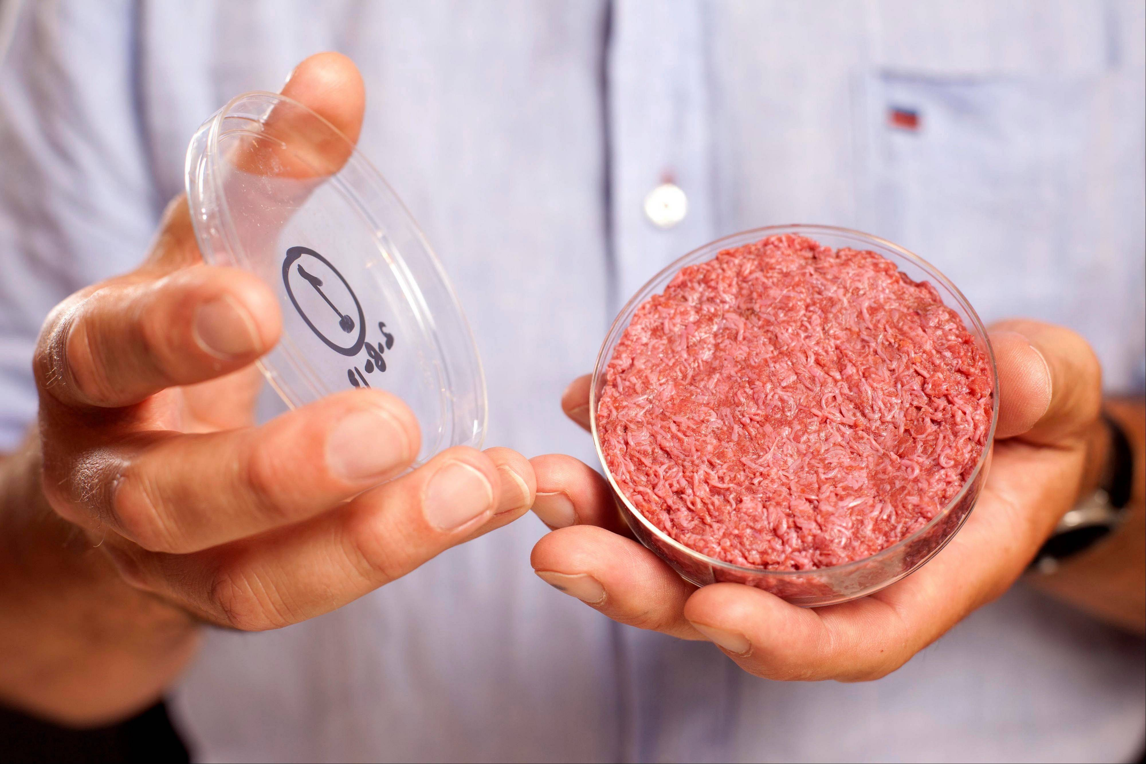 A new Cultured Beef Burger made from cultured beef grown in a laboratory from stem cells of cattle is held by the man who developed the burger, Professor Mark Post of Netherland's Maastricht University, during a the world's first public tasting event for the food product in London, Monday. The Cultured Beef could help solve the coming food crisis and combat climate change, according to the producers of the burger, which cost some 250,000 euros ($332,000) to produce.