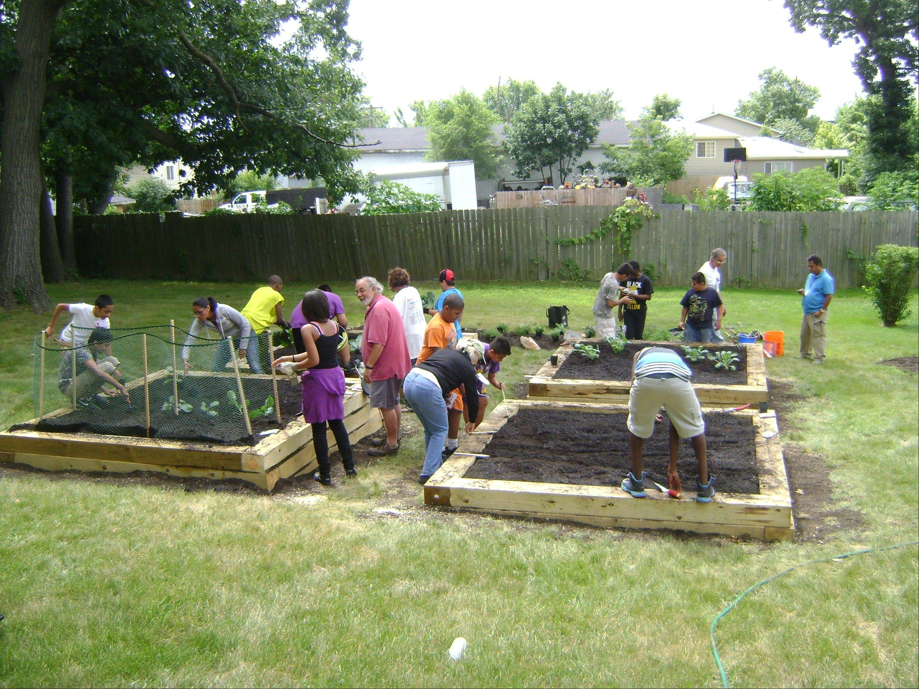 Youth from Nicasa's Teen REACH After School Program plant vegetables and herbs in Tricia's Garden.