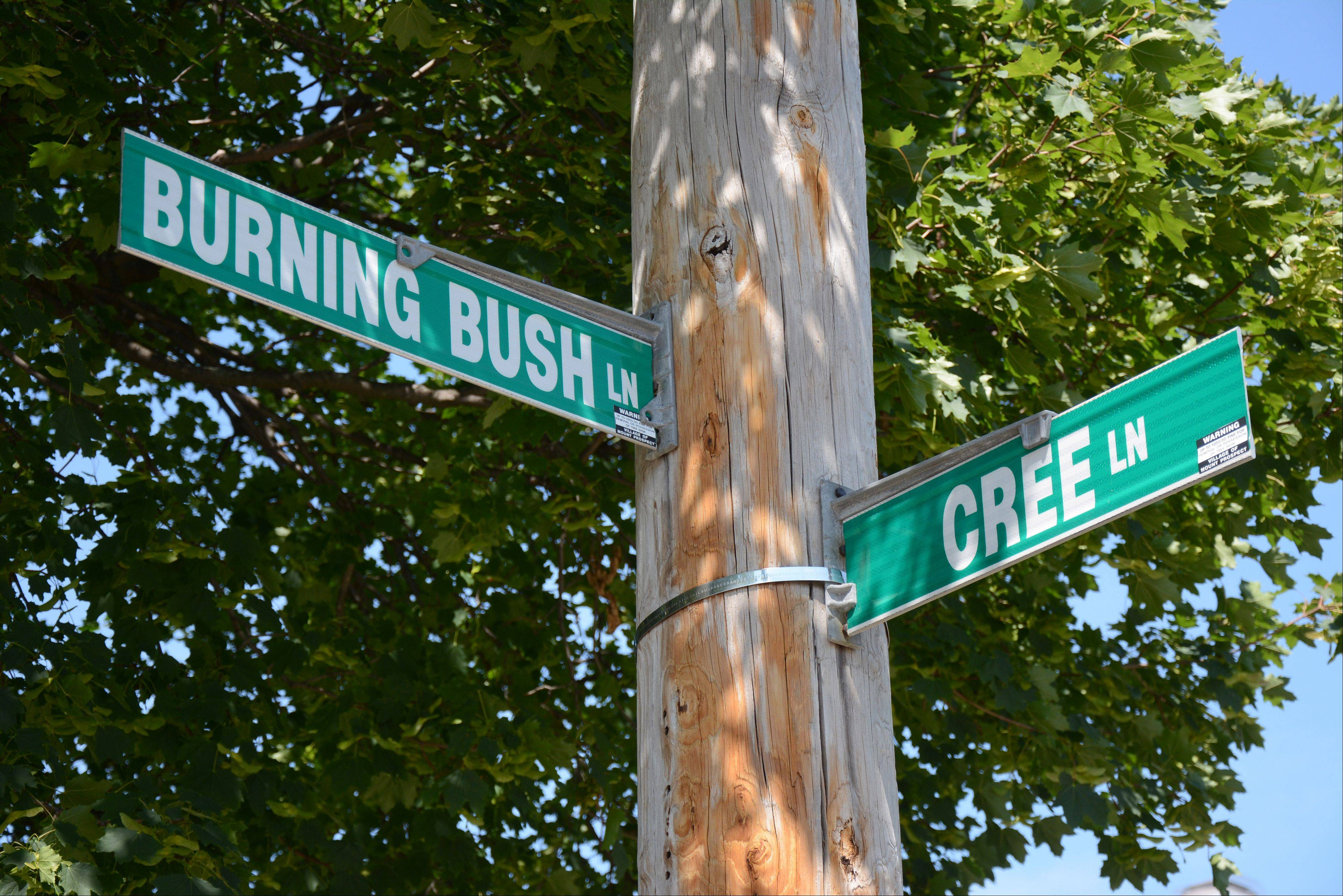Hoping to ease traffic congestion near Indian Grove Elementary School, Mount Prospect trustees prohibited parking on the east side of Burning Bush Lane between Cree Lane and Burr Oak Drive on school days between 8 a.m. and 4 p.m.