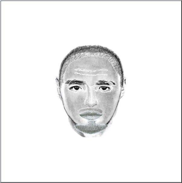 Police on Monday released this composite sketch of a man who approached a teen girl last month near Wheaton. Anyone with information on the case is being asked to call (630) 407-2400.