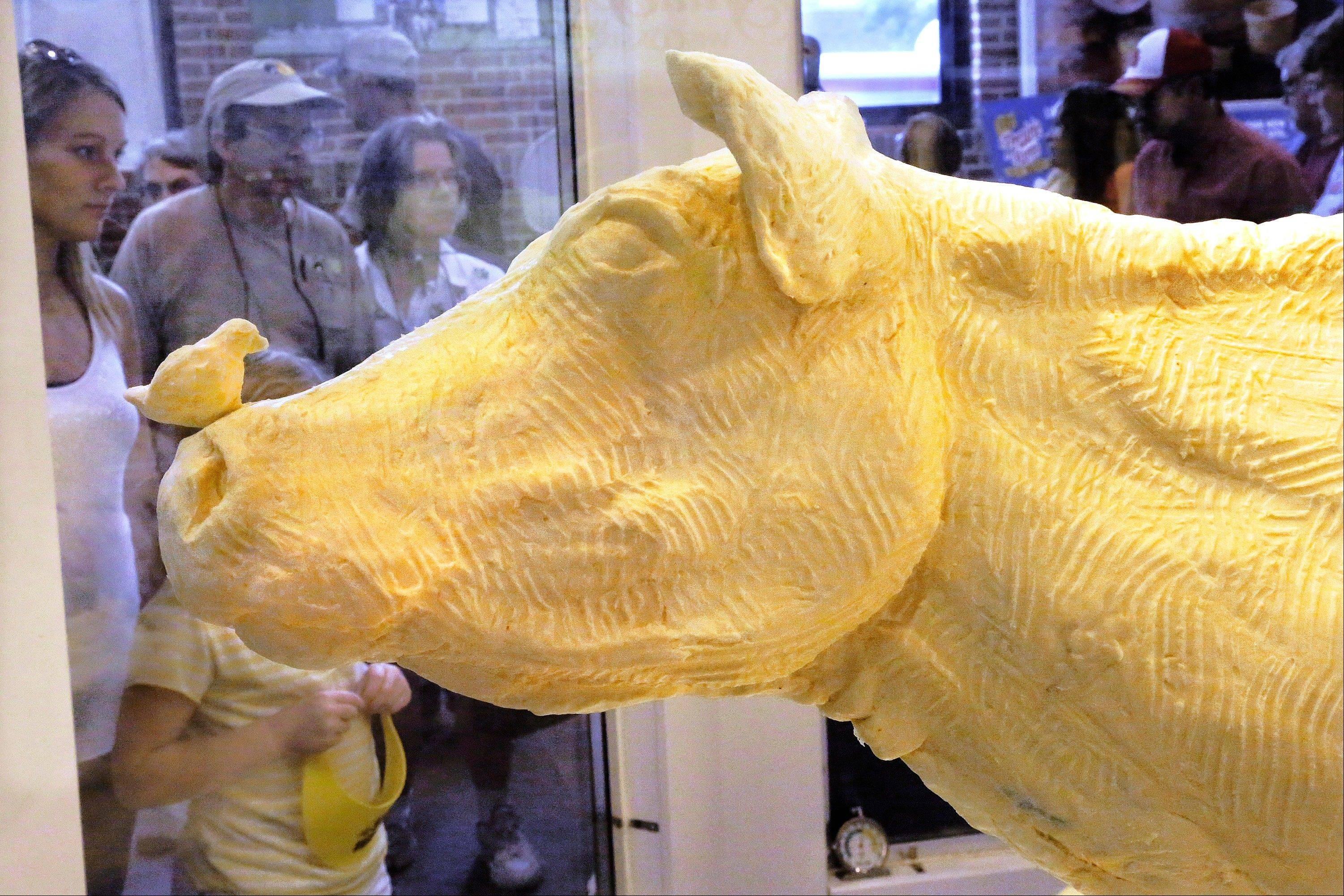 Visitors to the Dairy Barn at the Illinois State Fair enjoy the Butter Cow exhibit Tuesday in Springfield.