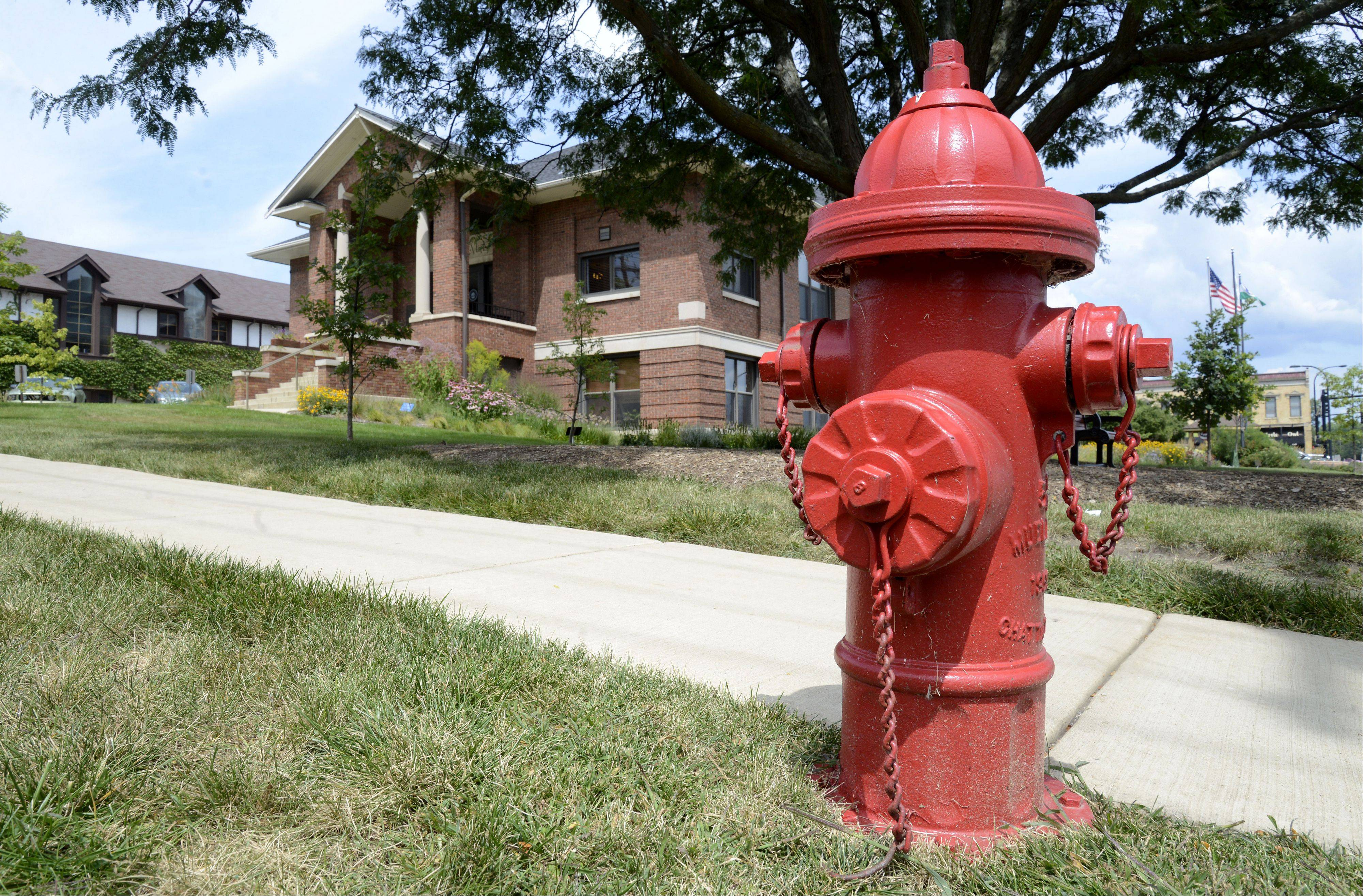 Fire hydrants, like this one in front of Geneva�s City Hall, will be painted in an upcoming contest called �Art on Fire.� The city and the Cultural Arts Commission are looking for artists to �adopt� and creatively paint hydrants throughout the city. The deadline to submit applications is Aug. 30.
