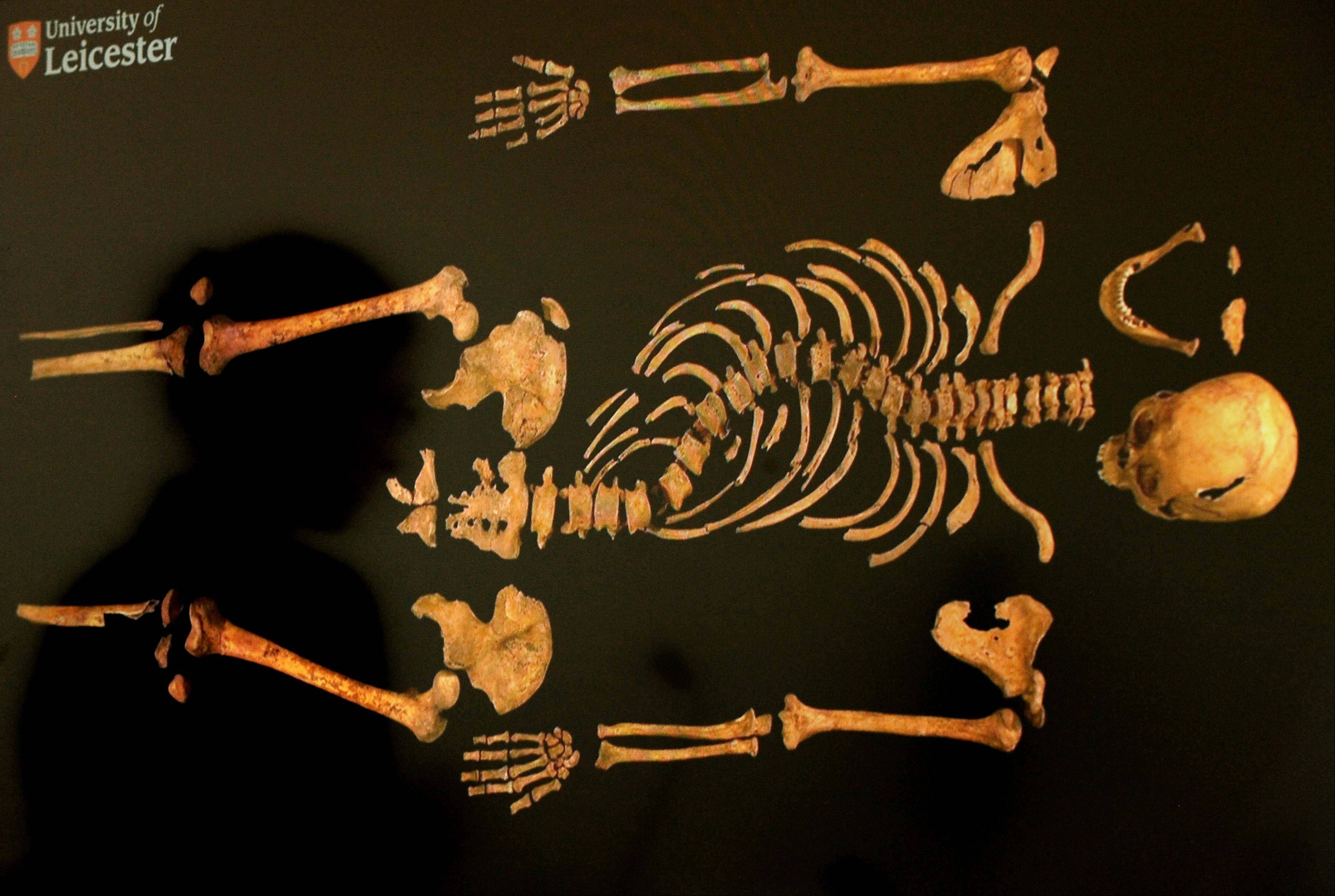 A view of the skeleton of England's King Richard III. A British High Court judge on Friday Aug. 16, 2013 granted a group of Richard's relatives the right to challenge plans to rebury the 15th-century monarch in the city of Leicester, where his remains were found last year.