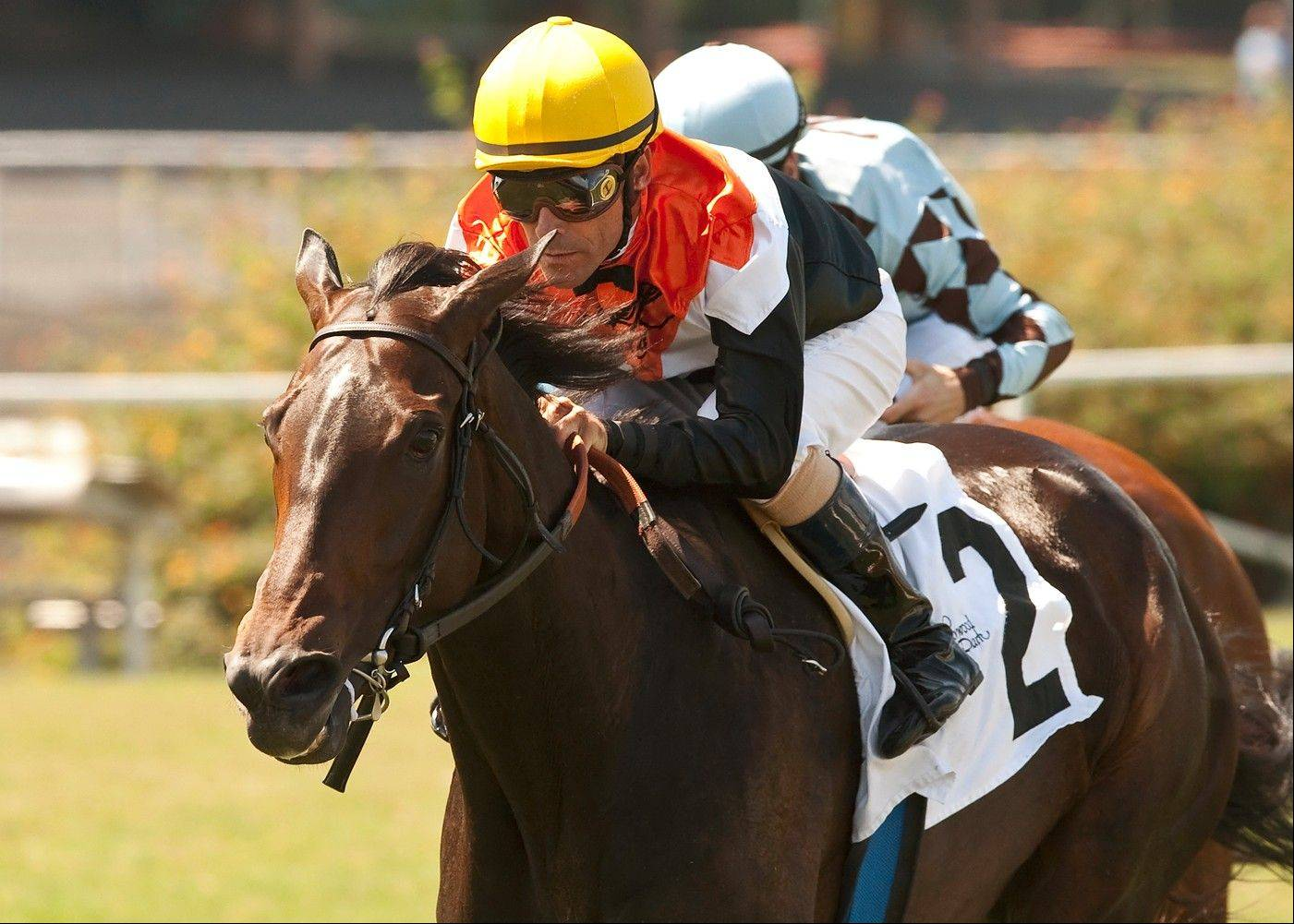 This photo released by Benoit Photo shows Glen Hill Farm's Marketing Mix, and Gary Stevens, right, holding off Dhaamer and Julien Leparoux for victory in the Grade III $100,000 Sunset Handicap Sunday, July 14, 2013 at Betfair Hollywood Park, Inglewood, Calif.