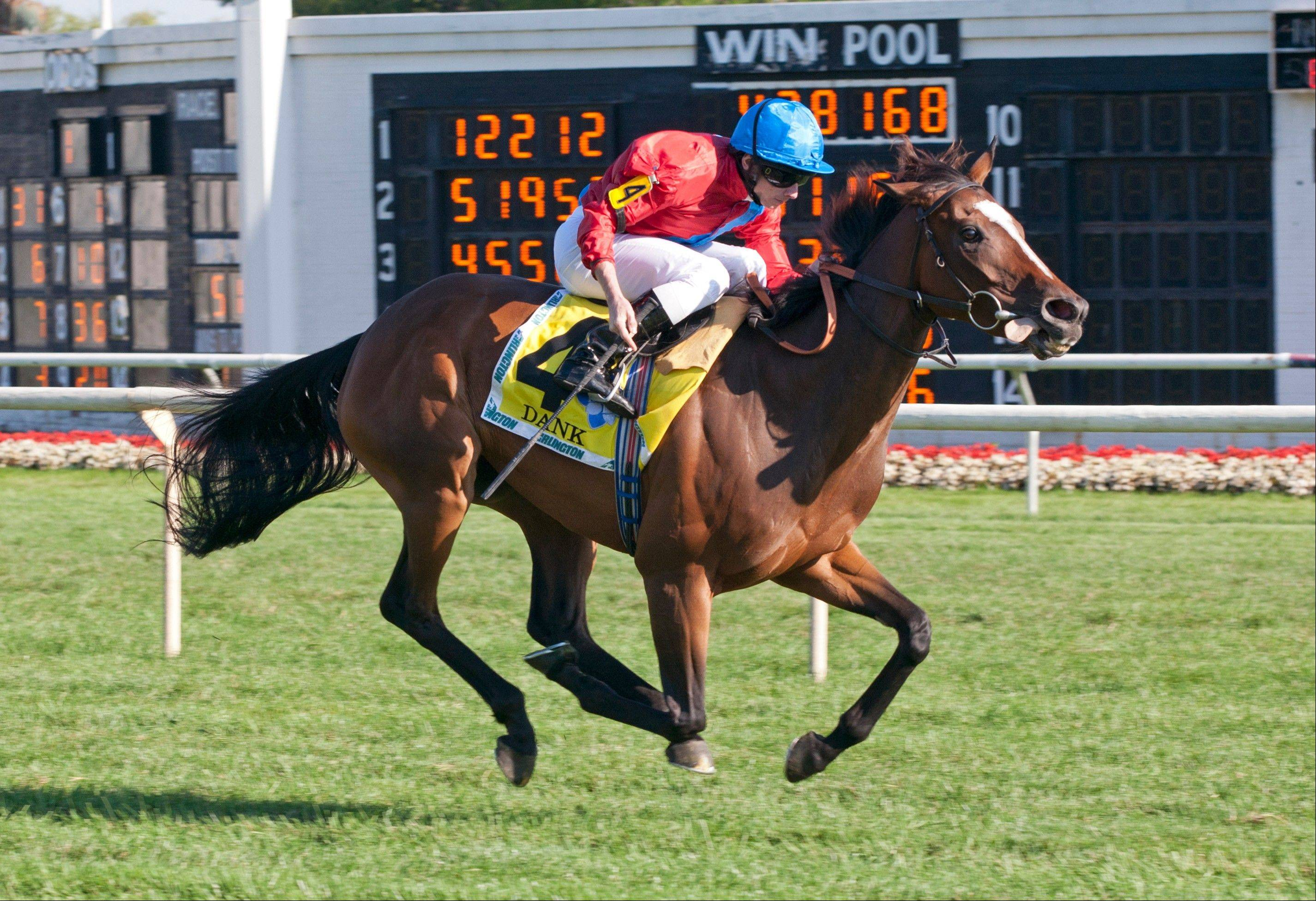 Beverly D winner Dank has won five of her last 10 races.