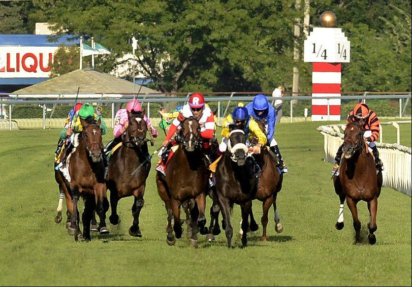 Real Solution, in red and white, gets bumpbed in the stretch by The Apache, in yellow and blue, who was disqualified giving the victory to Real Solution in the Arlington Million during the Arlington International Festival of Racing at Arlington International Racecourse.