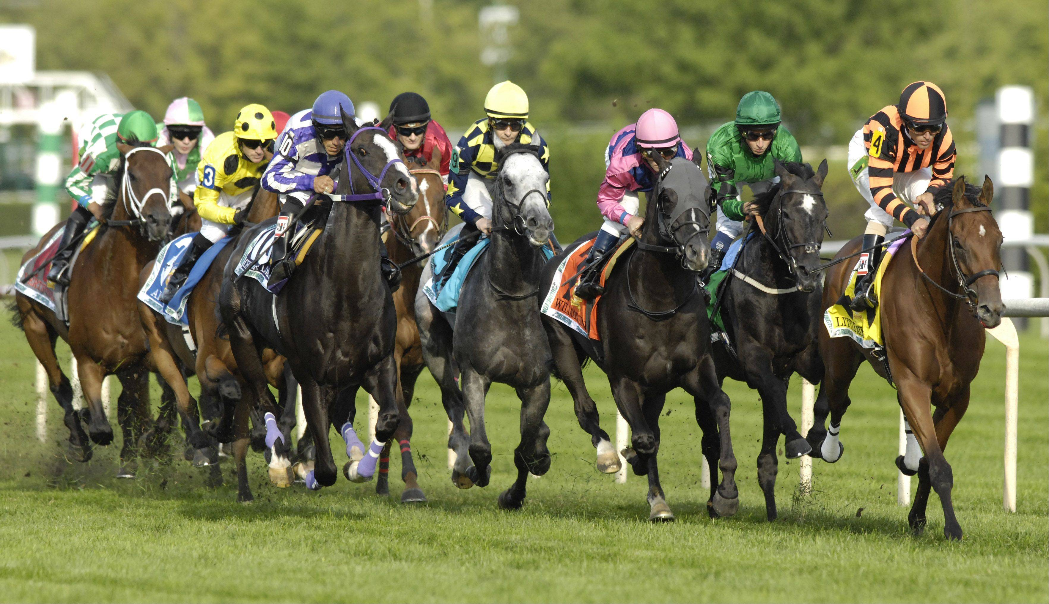 The field passes shortly after the start, with eventual winner Little Mike at right, during last year's edition of the Arlington Million at Arlington Park.