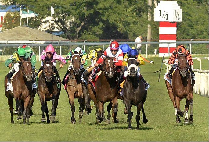 Real Solution, in red and white, is interfered with in the stretch by The Apache, in yellow and blue, who was disqualified giving the victory to Real Solution in the Arlington Million during the Arlington International Festival of Racing at Arlington International Racecourse.