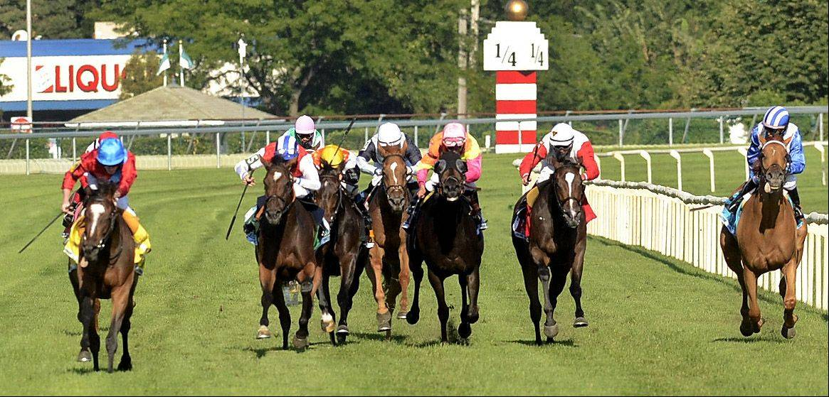 Dank, far left, wins The Beverly D. during the Arlington International Festival of Racing at Arlington International Racecourse.
