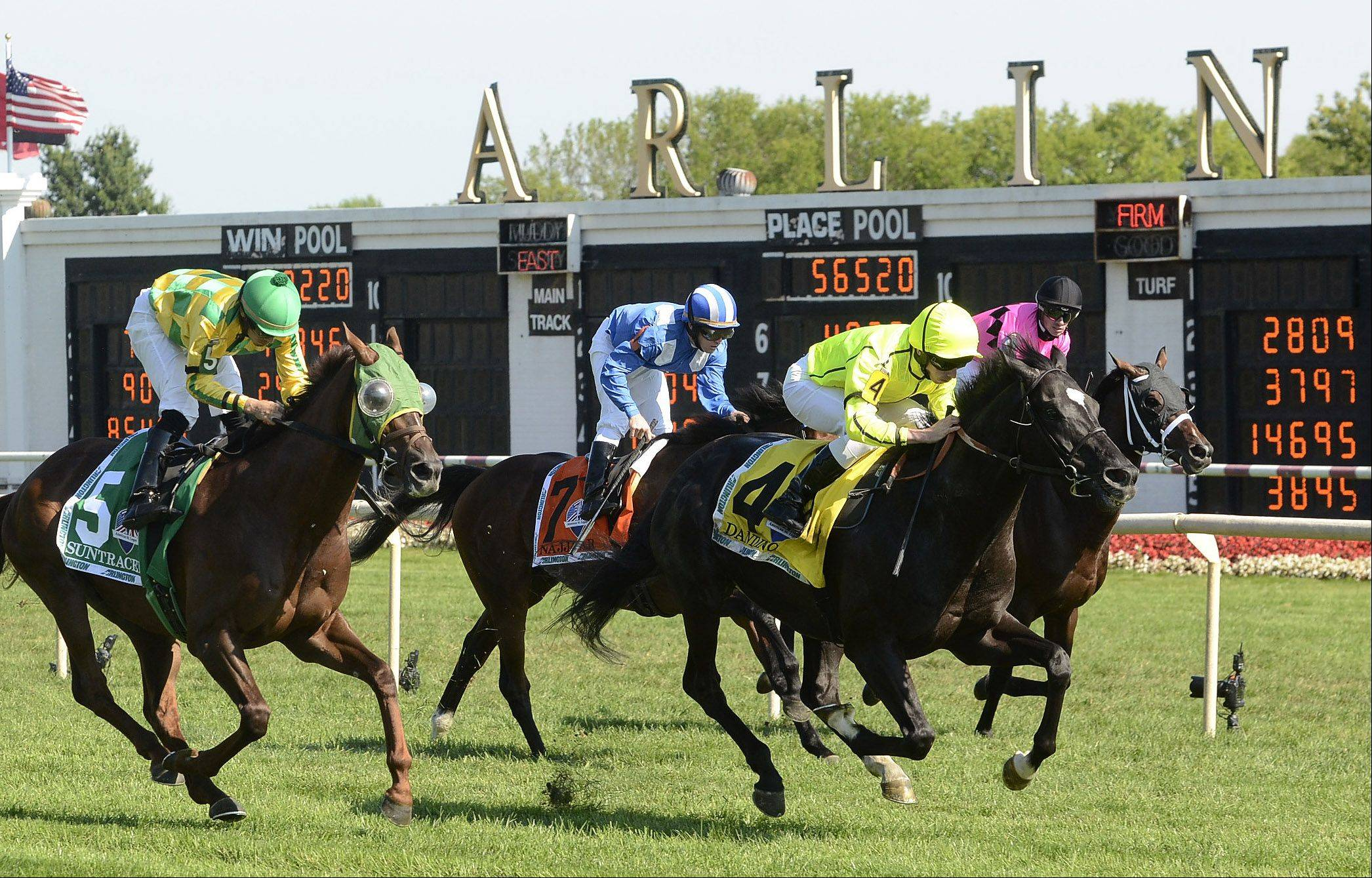 Dandino, 4, wins the American St. Leger race at the Arlington International Festival of Racing at Arlington International Racecourse.