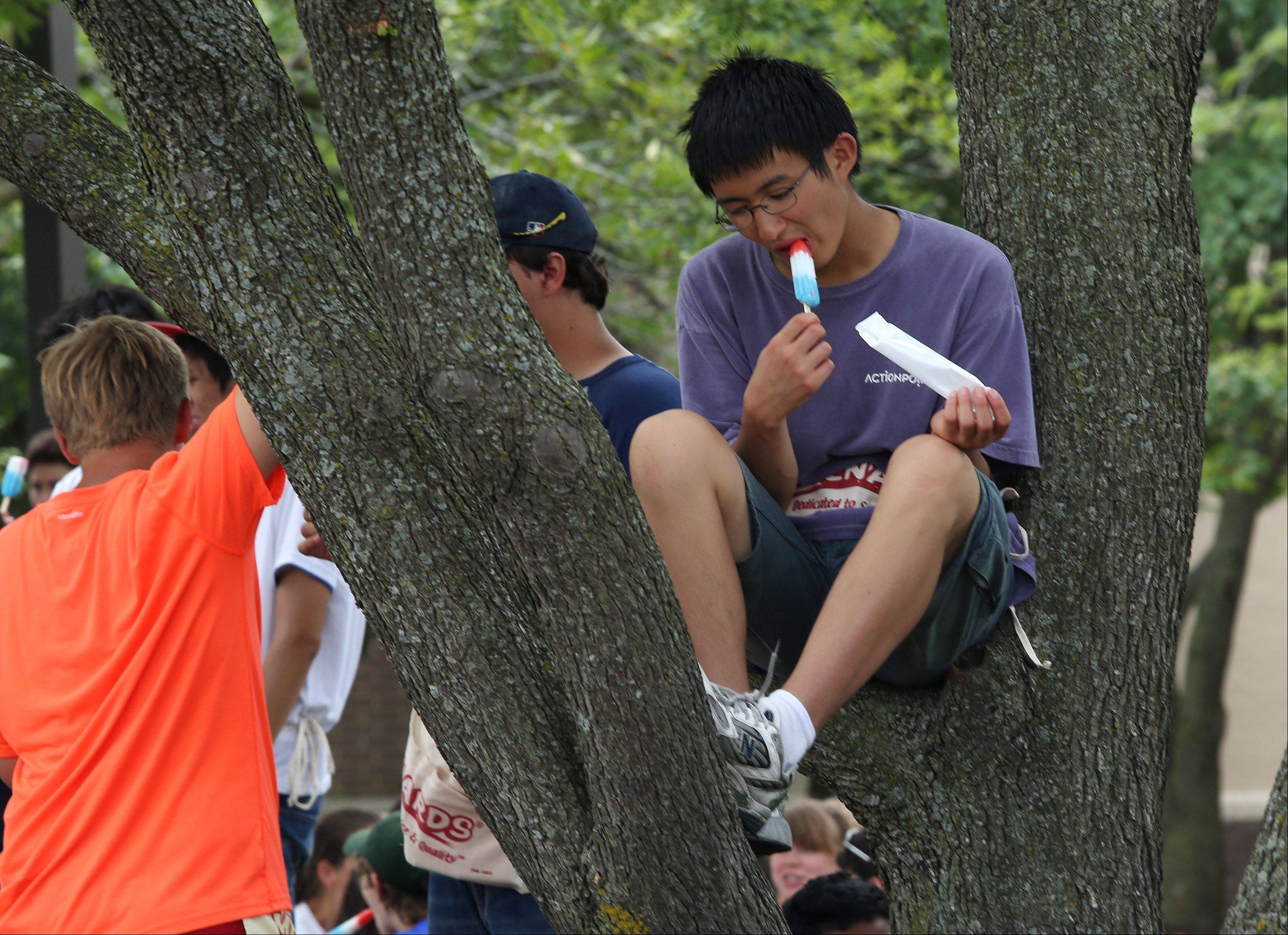 Richard Nai, 14, of Buffalo Grove, enjoys a popsicle during a break at band camp at Stevenson High School Monday. The Stevenson High School Marching Patriots Band and Color Guard Parents Organization have traditionally provided popsicles for breaks throughout band camp.