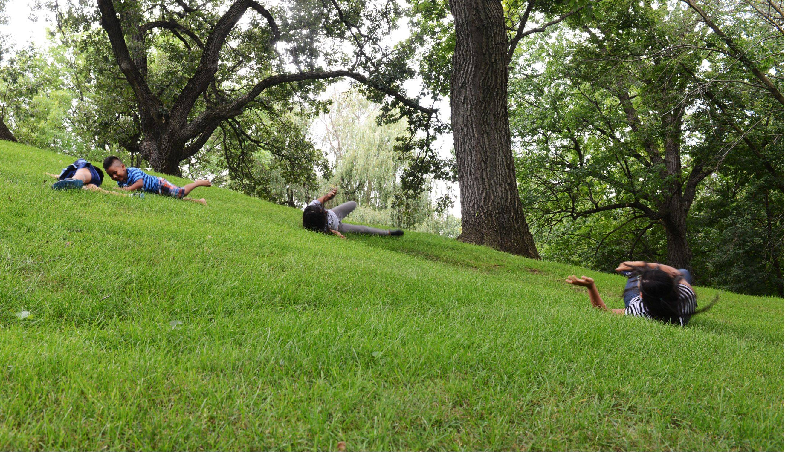 Jonathan Nicolas, 10, Neftaly Sebastian, 7, Edid Nicolas, 10, and Abby Sebastian, 12, roll down a hill in Lords Park in Elgin Monday. The children, all of whom are from Elgin, were there for an afternoon in the park with their families.