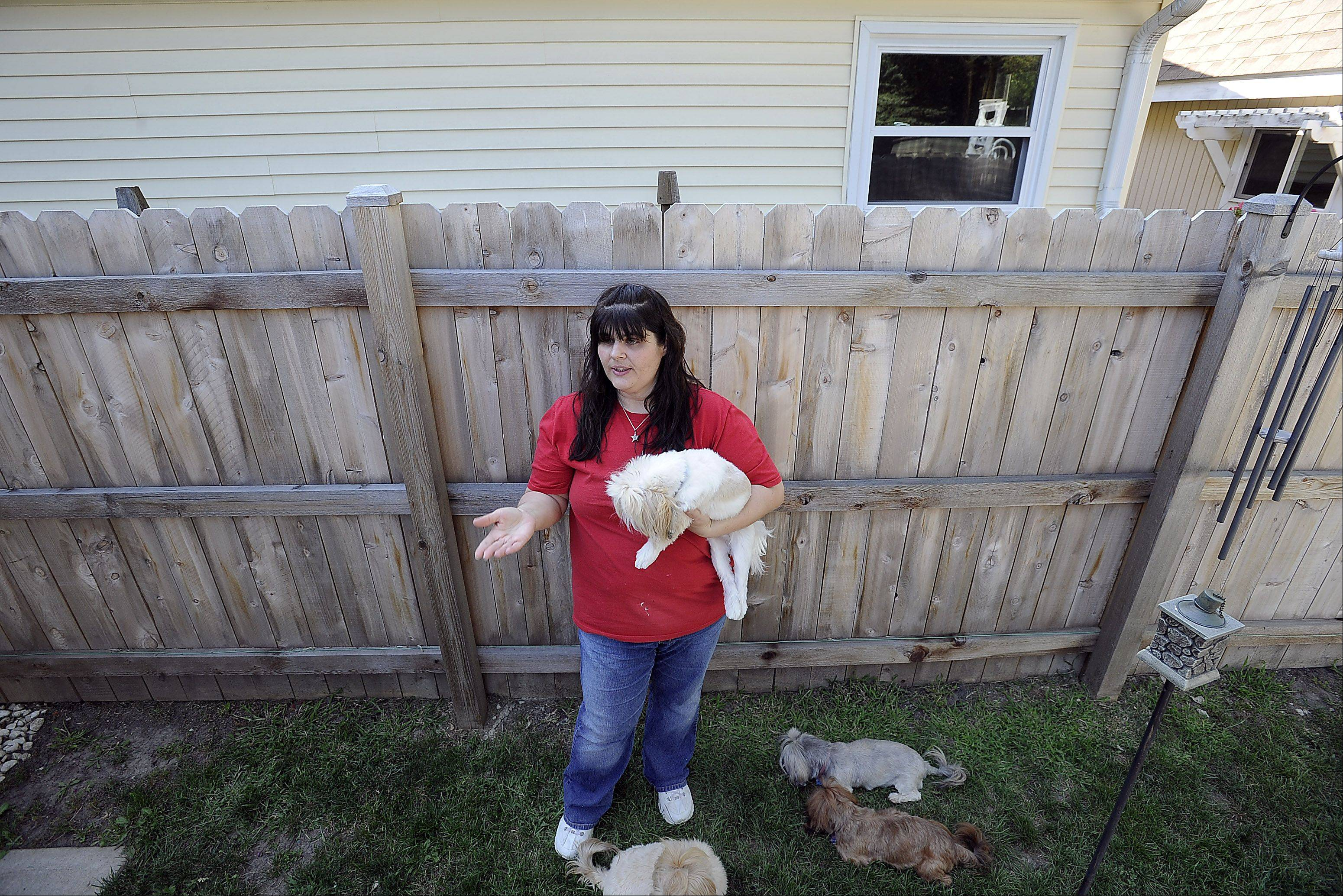 Cindy Weik of Elk Grove Village stands in her backyard next to the fence that she and her husband were told to erect by the village after the dogs they were breeding caused neighbors to complain.