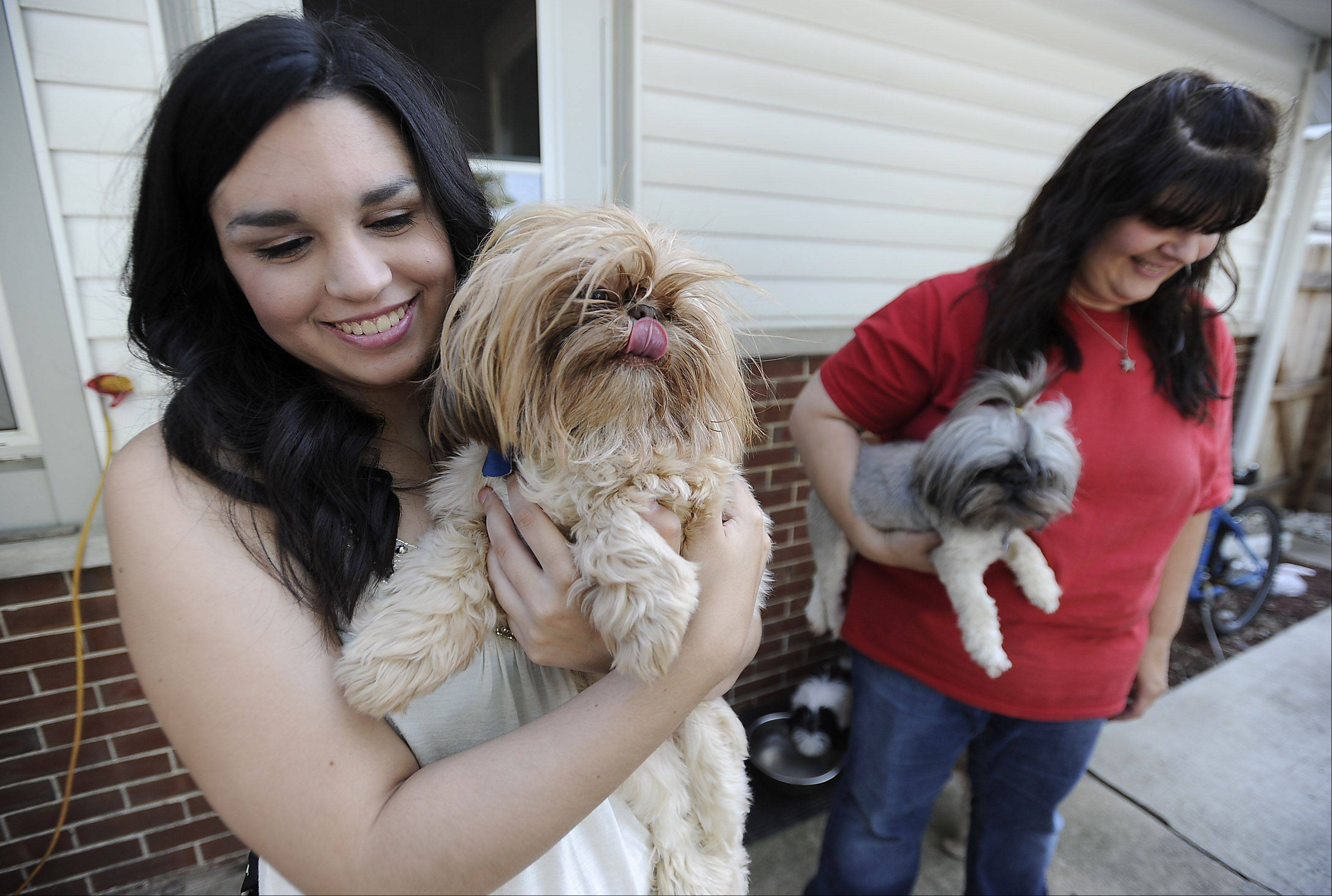 Brandi Weik and her mom Cindy at their Elk Grove Village home were the family breeds dogs.