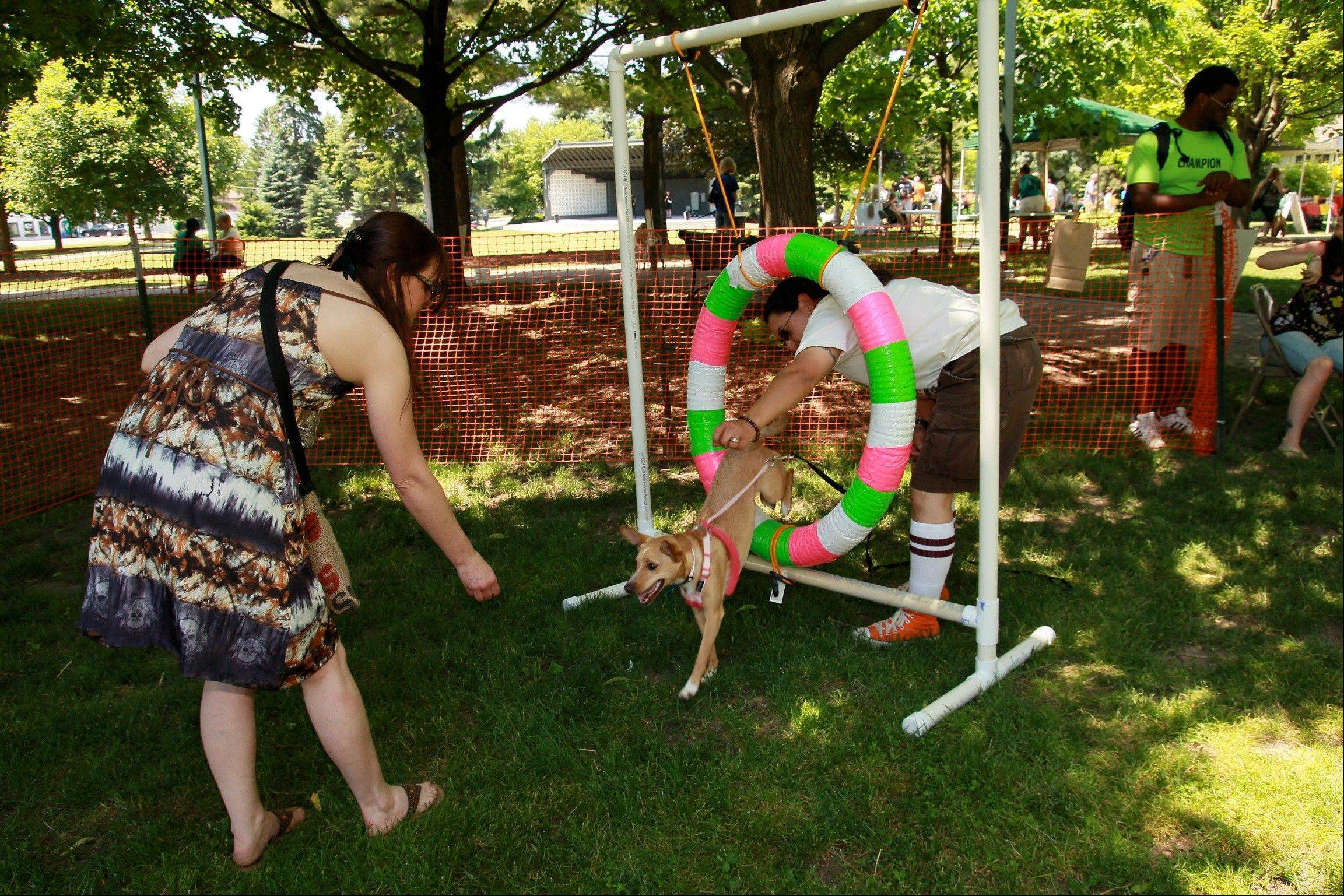Visitors and their pets had a good time at last year's inaugural Taylor and Romulus Fun Day in the Park in Gurnee. It returns Saturday in memory of Taylor Mae Stinchcomb and her dog, Romulus.