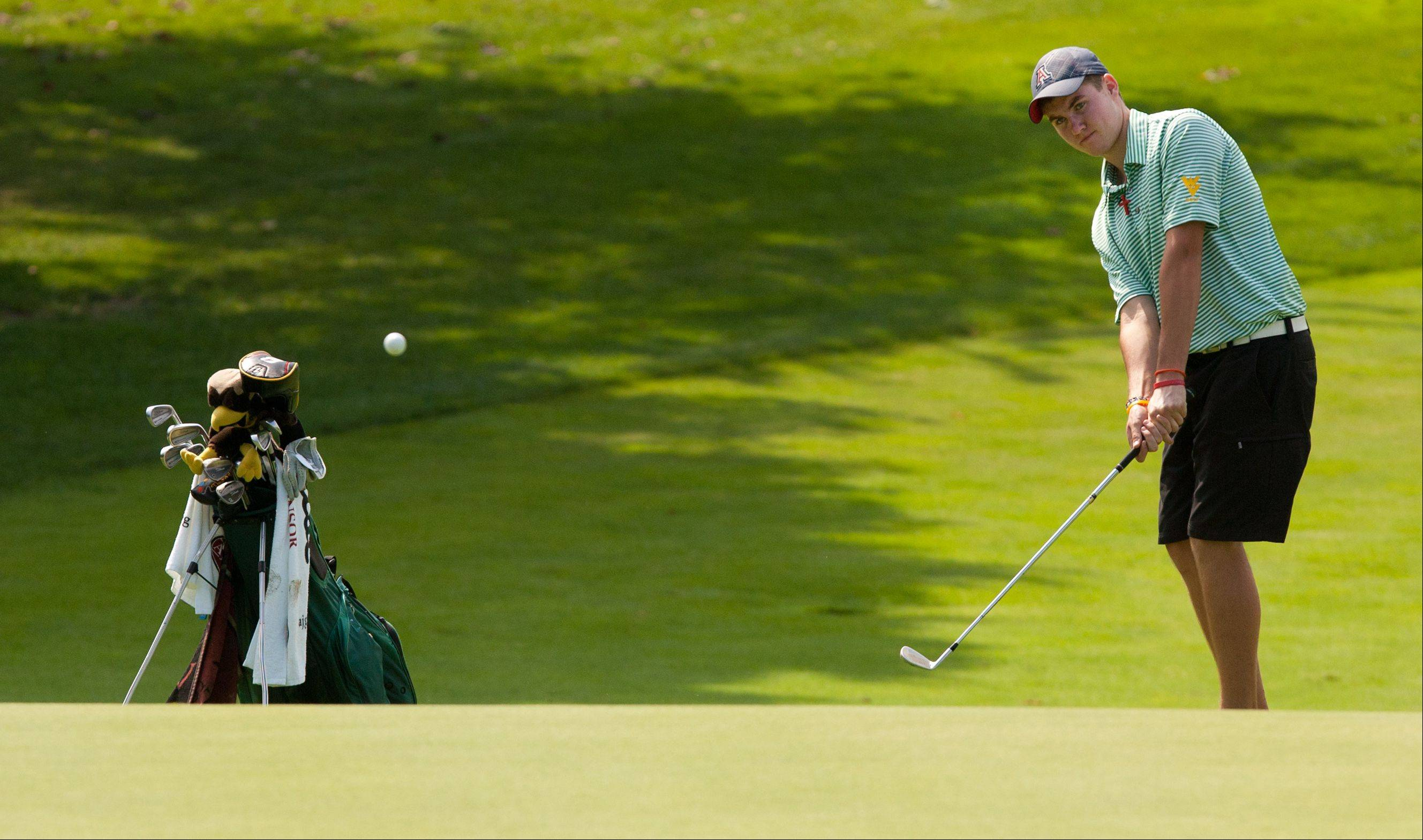 Jason Marrs of Waubonsie Valley chips towards the green during the 2013 Vern McGonagle Memorial boys and girls golf invitational at the Naperville Country Club.