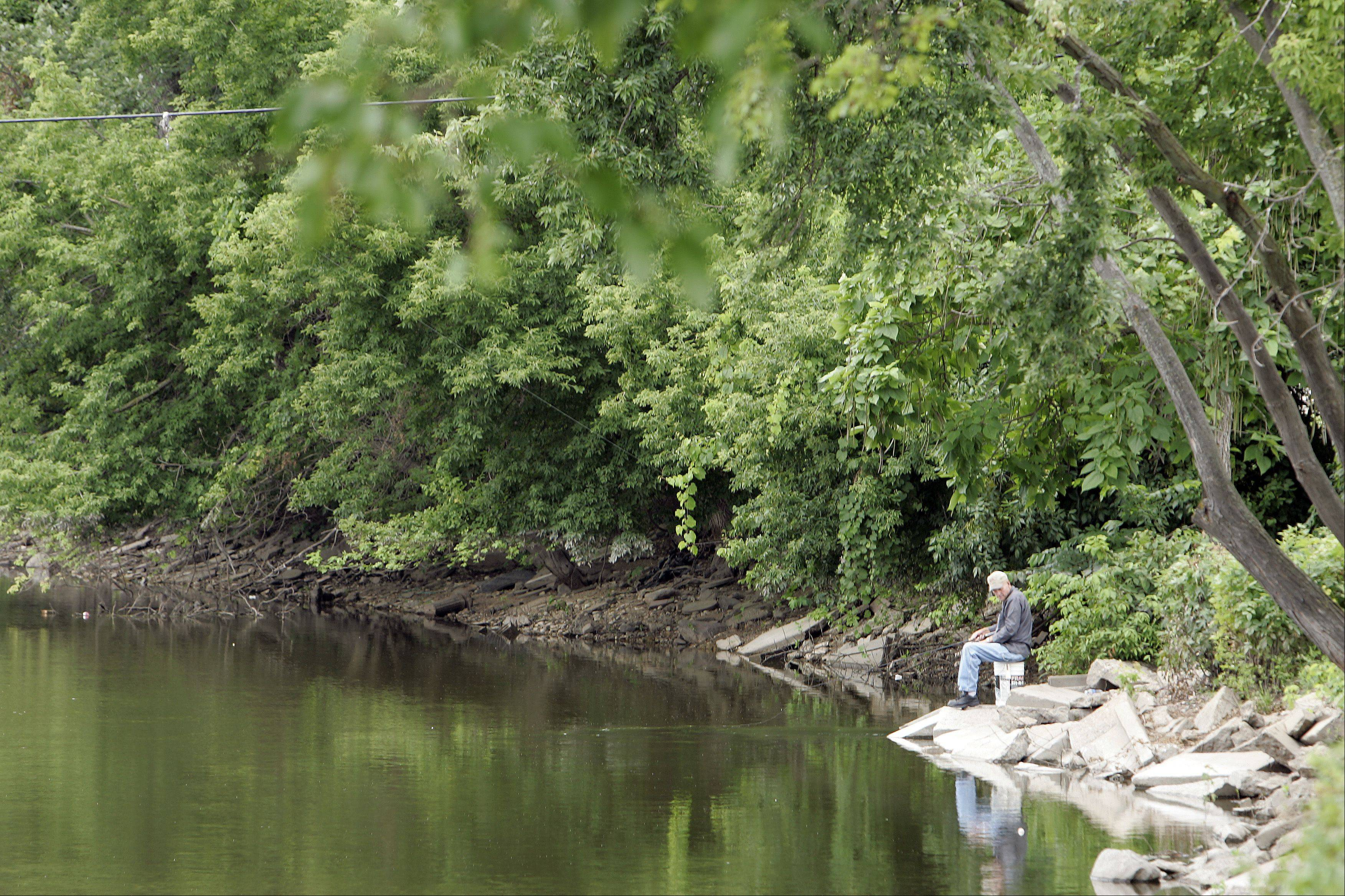 "A man fishes on the Fox River in Carpentersville, which offers walleyes and the occasional muskie. ""This is a hidden gem for fishing,"" Village President Ed Ritter says."