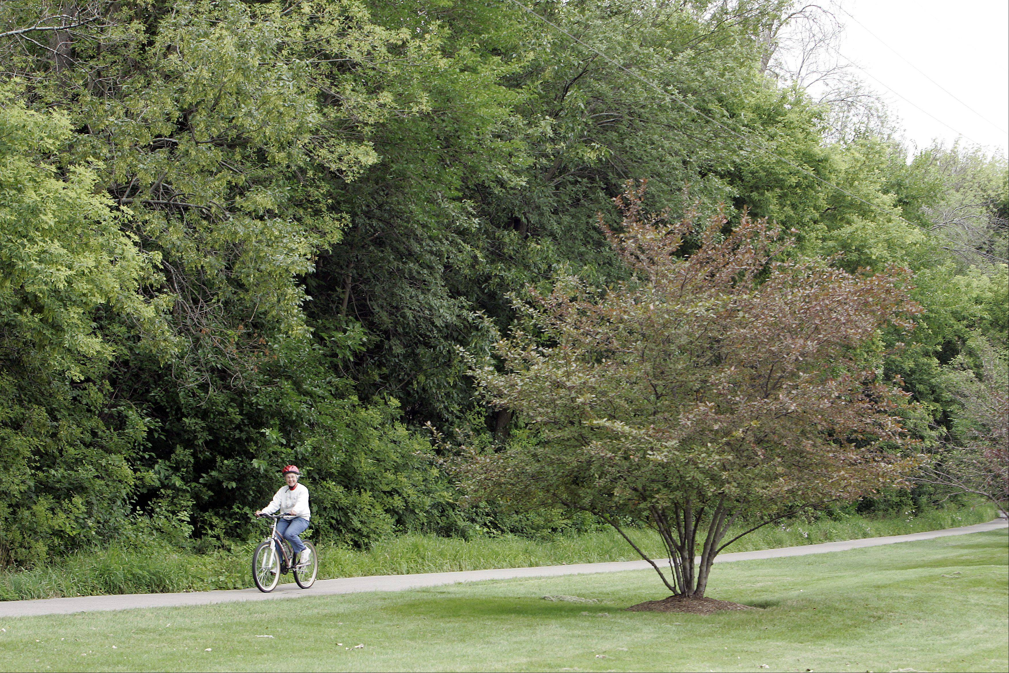 Village leaders have applied for a grant that would allow them to link the Fox River Bike Trail with Carpenter Park.