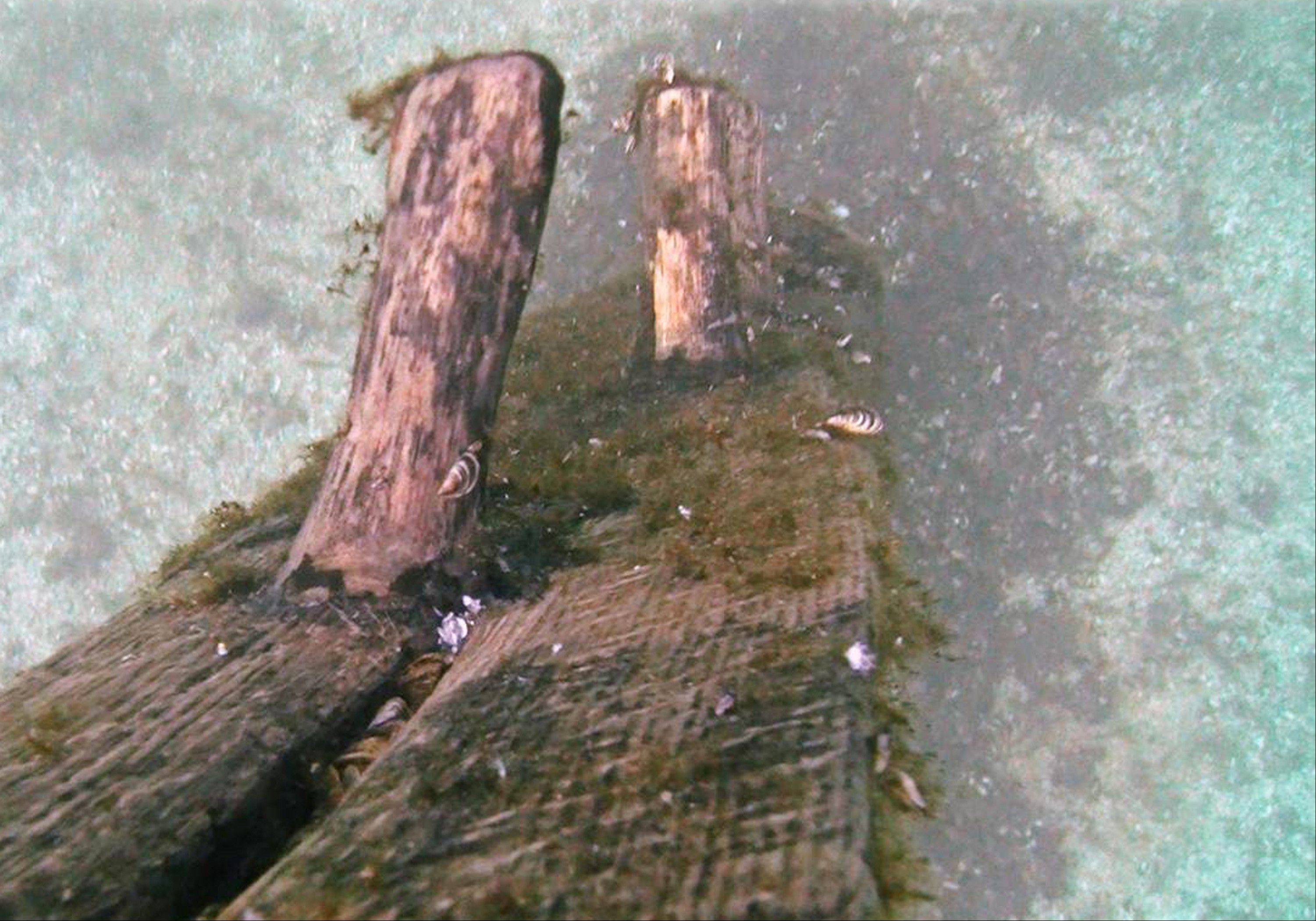 Timbers protrude from the bottom of Lake Michigan that were discovered by Steve Libert, head of Great Lakes Exploration Group, in 2001. On Saturday, Libert�s crew will haul the massive timber to the radiology section of a Gaylord, Mich., hospital for a CT scan hoping to determining the age of the tree that produced it and when it was cut down.