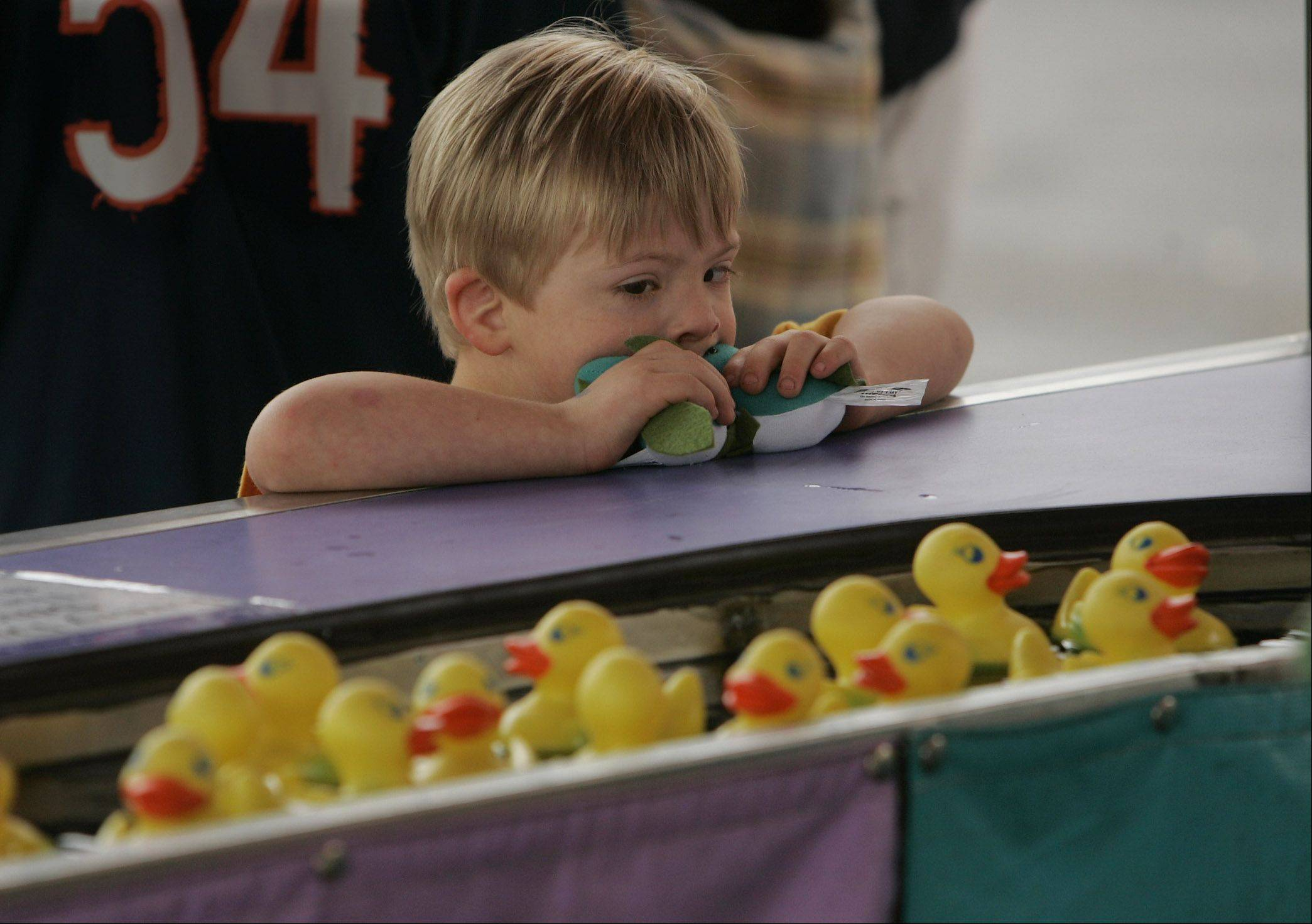 A 4-year-old Buffalo Grove boy looks at the plastic ducks floating by at the Lucky Ducky Duck Pond during the 2004 Buffalo Grove Days festival.