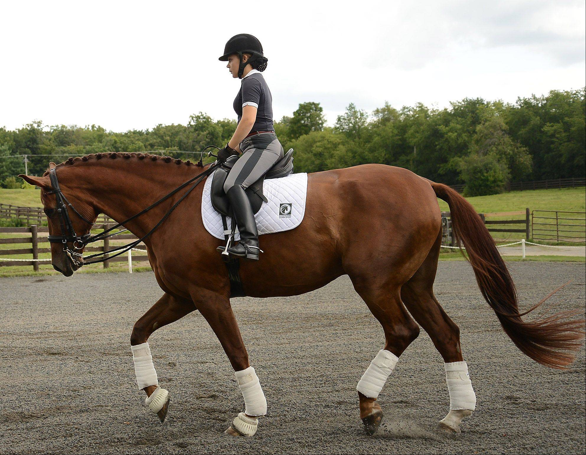 Barrington High School senior Rosie Julian-Simoes and horse Proteus train at the Flying Dutchman Farm in Barrington Hills. She's among the country's top-ranked dressage competitors in her division.