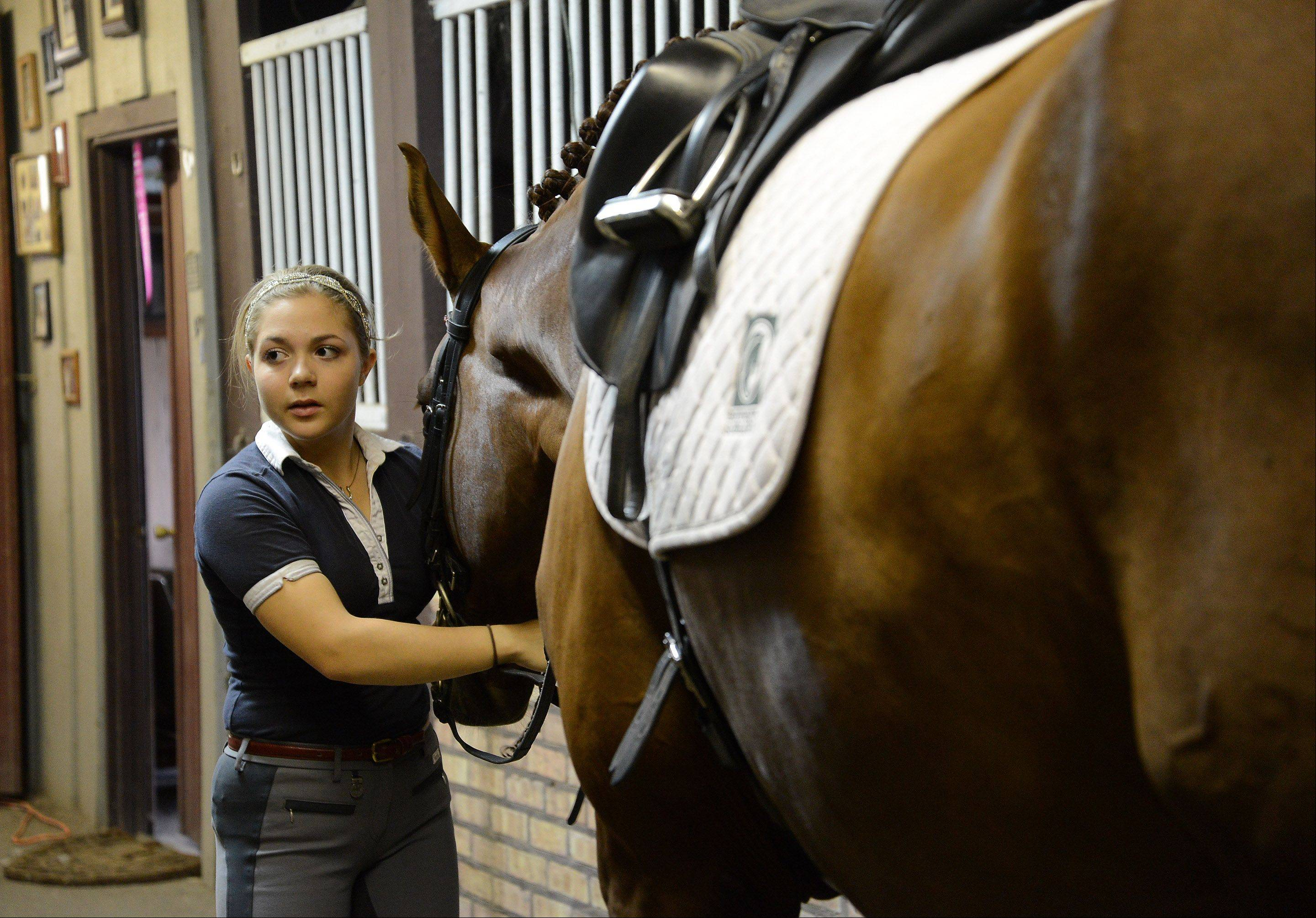 Barrington High School senior Rosie Julian-Simoes and horse Proteus prep for a training session at the Flying Dutchman Farm in Barrington Hills. She's among the country's top-ranked dressage competitors in her division.