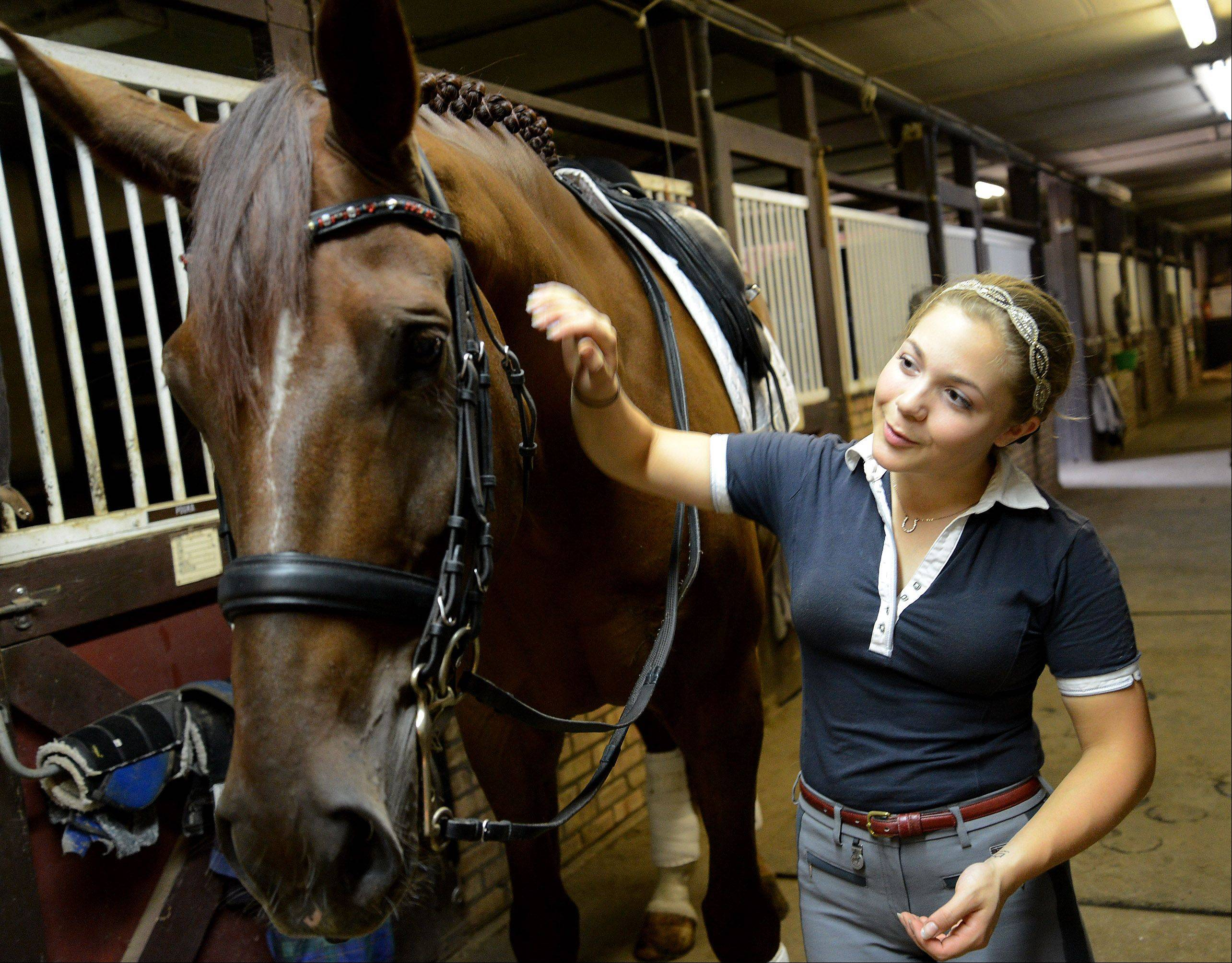 Barrington High School senior Rosie Julian-Simoes and horse Proteus prep for a training session at the Flying Dutchman Farm in Barrington Hills. Rosie is one of the country's top-ranked dressage competitors in her division and hopes to eventually compete internationally.