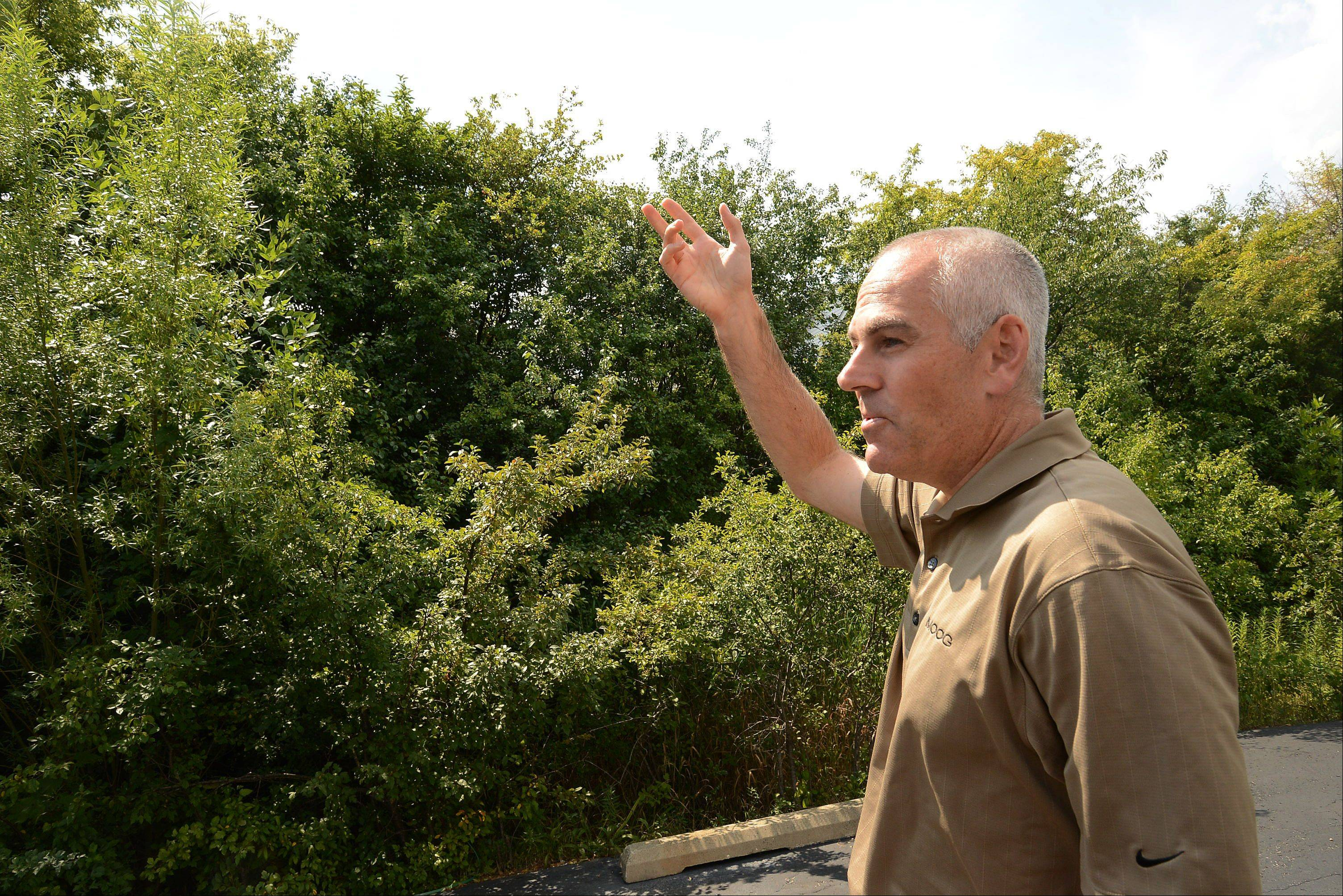 Weedy trees have been growing for years on a small patch of ground behind the parking lot for Quality Hydrualics in Mundelein. But company president John Felsenthal notes that he has no legal obligation to trim branches that grow over the fence and anger gardener and homeowner Robin Sachs.
