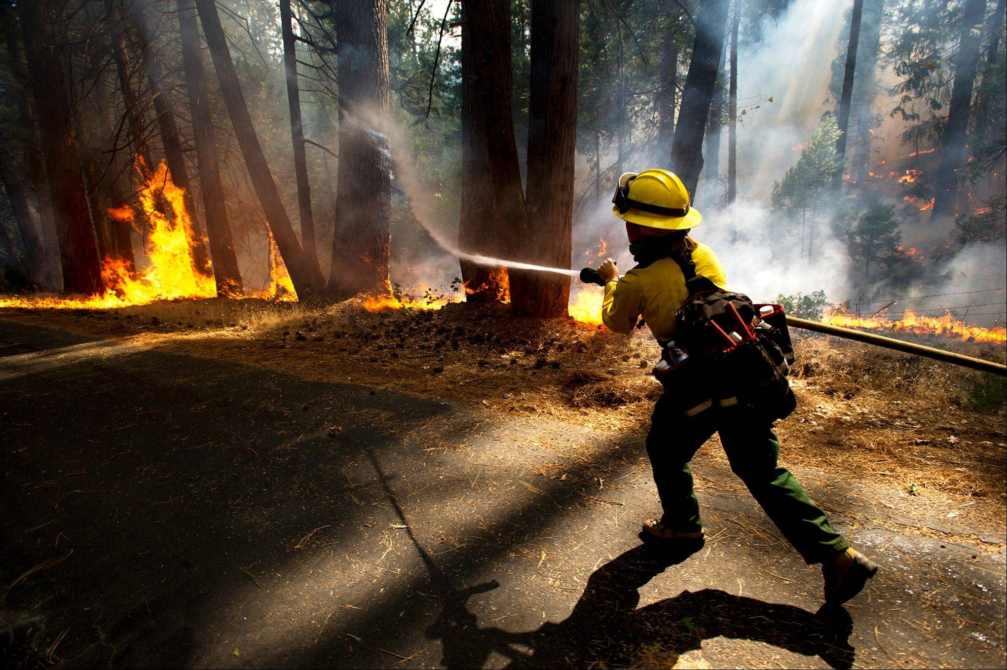 Colorado Rural Protection firefighter Molly McGee fights the Rim Fire in the Stanislaus National Forest Thursday, Aug. 22, 2013.