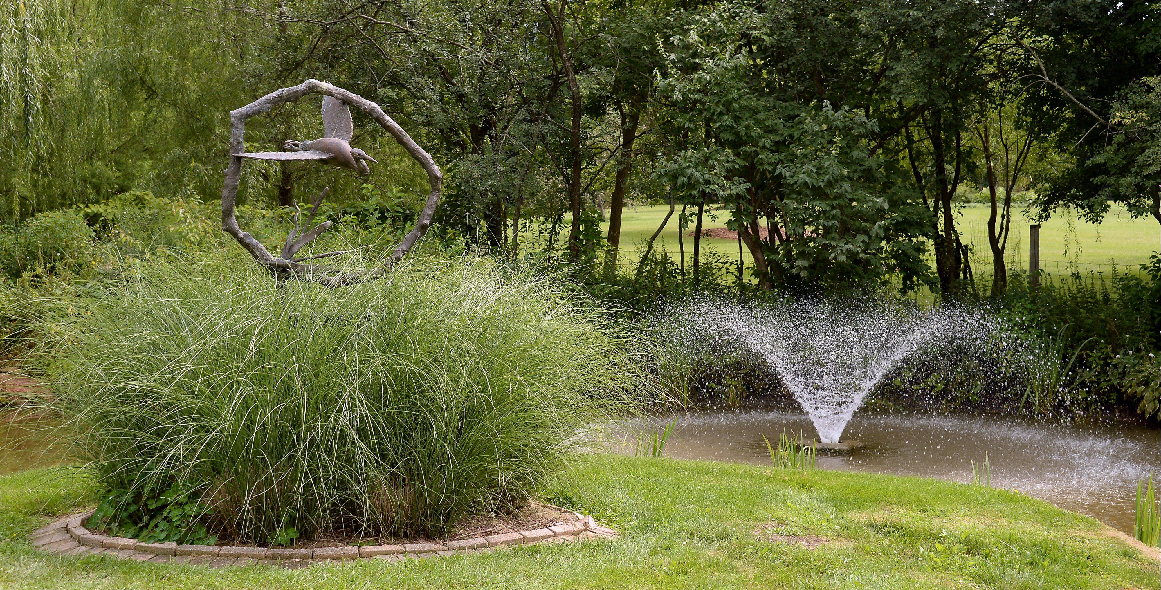Lynn Rushing celebrates the pond in her Barrington Hills yard.