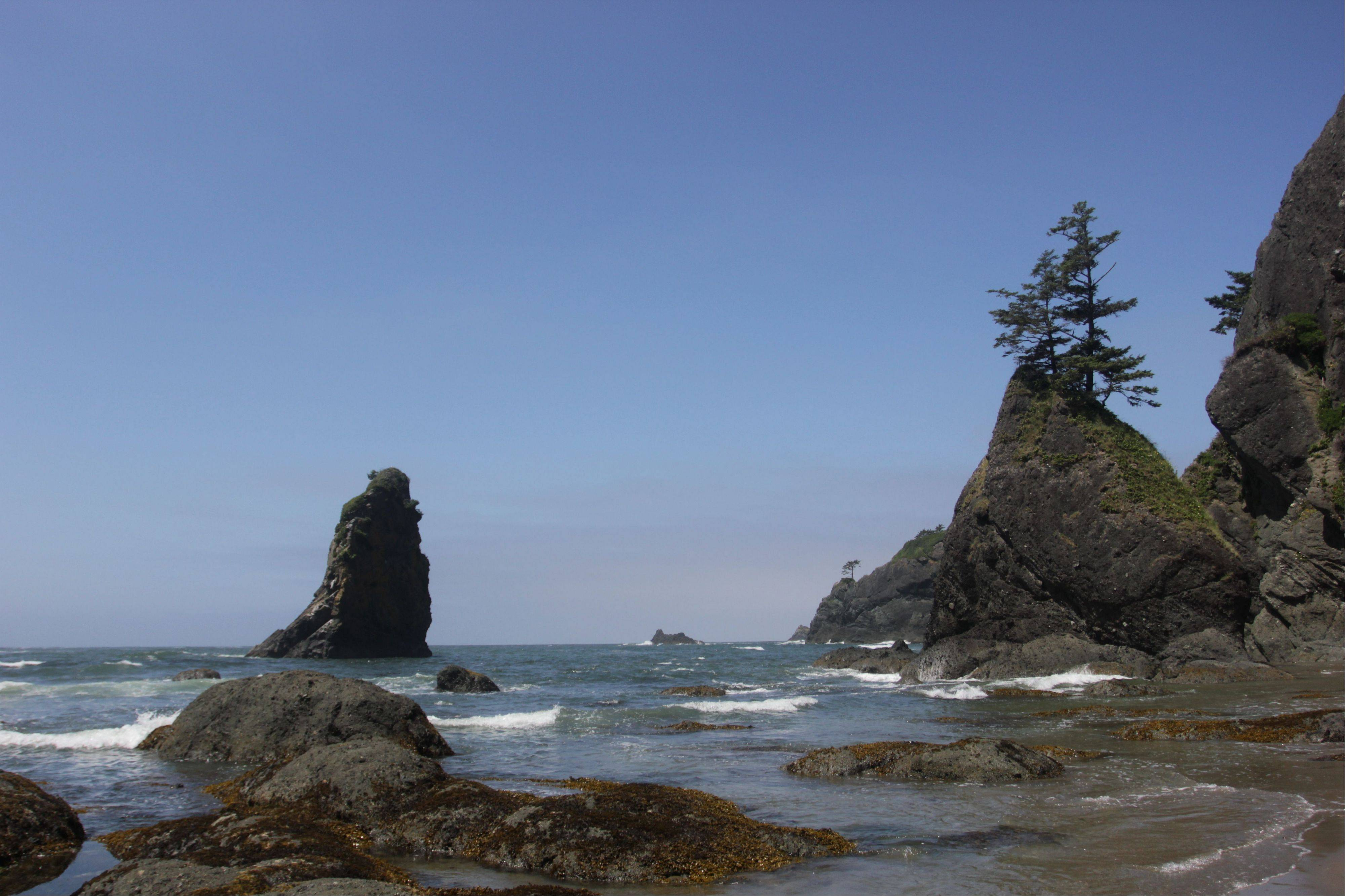 Rock formations known as sea stacks protrude out to the Pacific Ocean at the north end of Shi Shi Beach in Washington state's Olympic National Park.