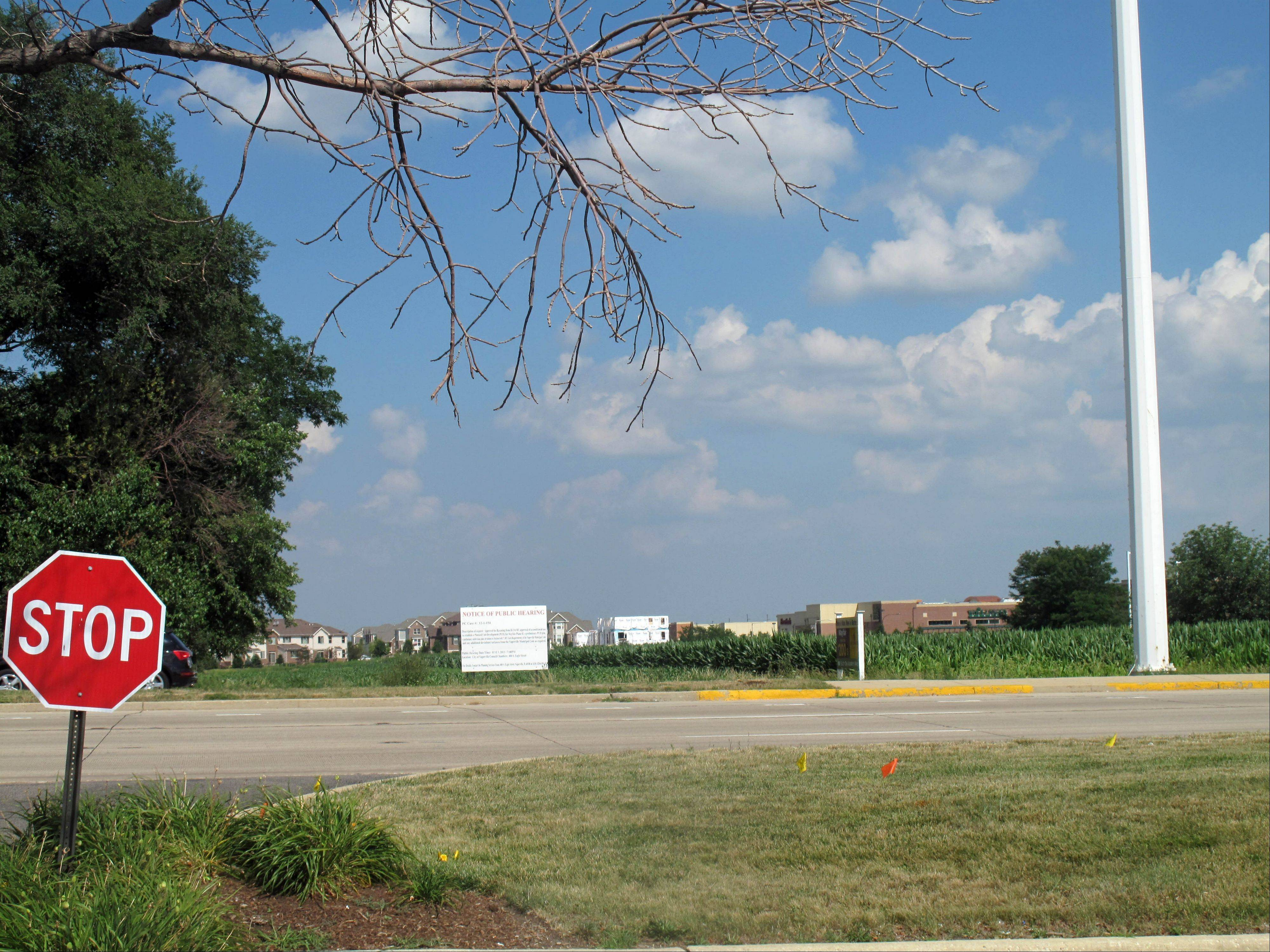 This field on Route 59 south of Ogden Avenue and 75th Street in Naperville is the future home of the 138-townhouse Mayfair phase two development after the Naperville City Council rezoned the site from commercial to residential.